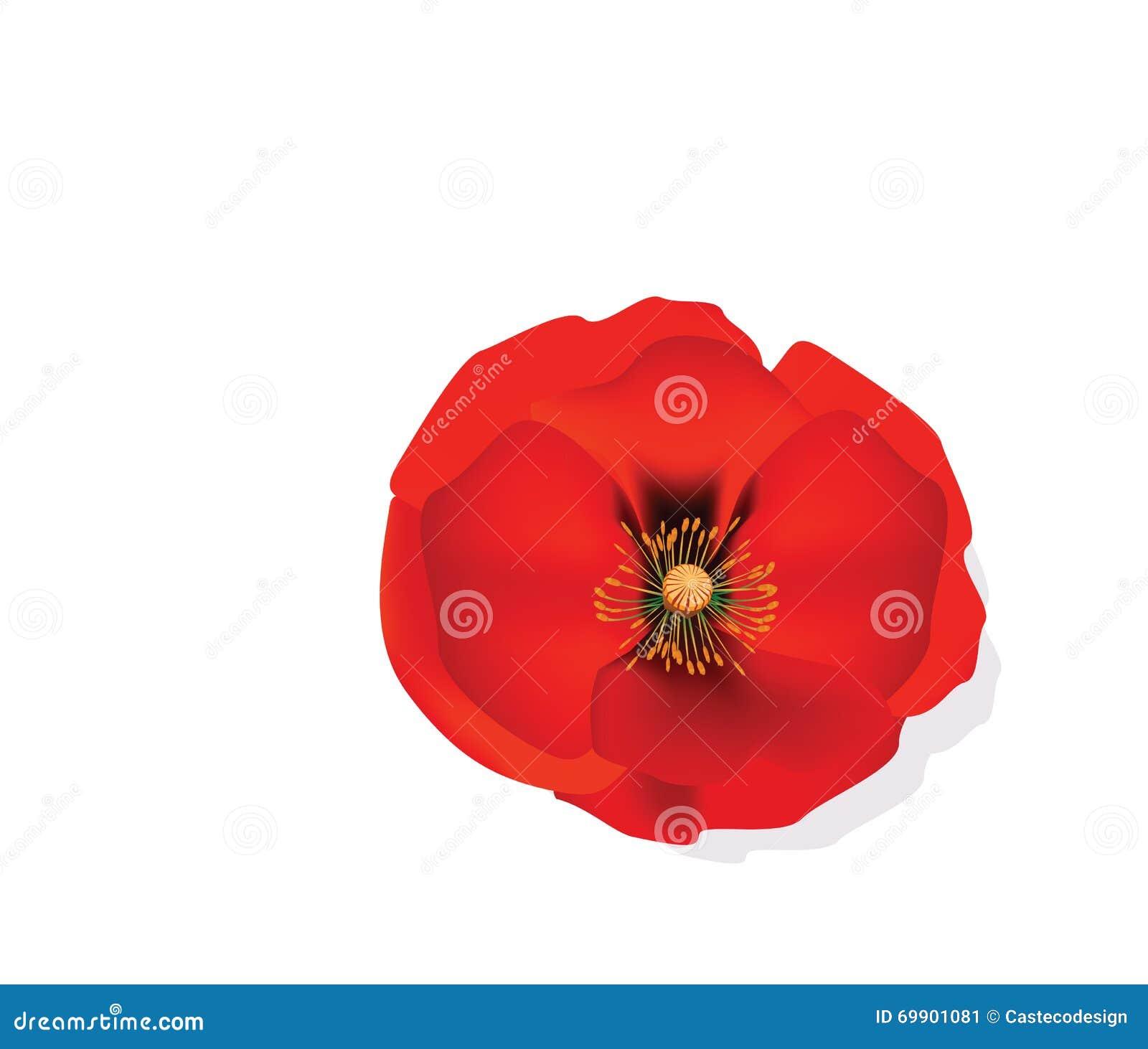 Fleur Romantique Rouge De Pavot Illustration De Vecteur