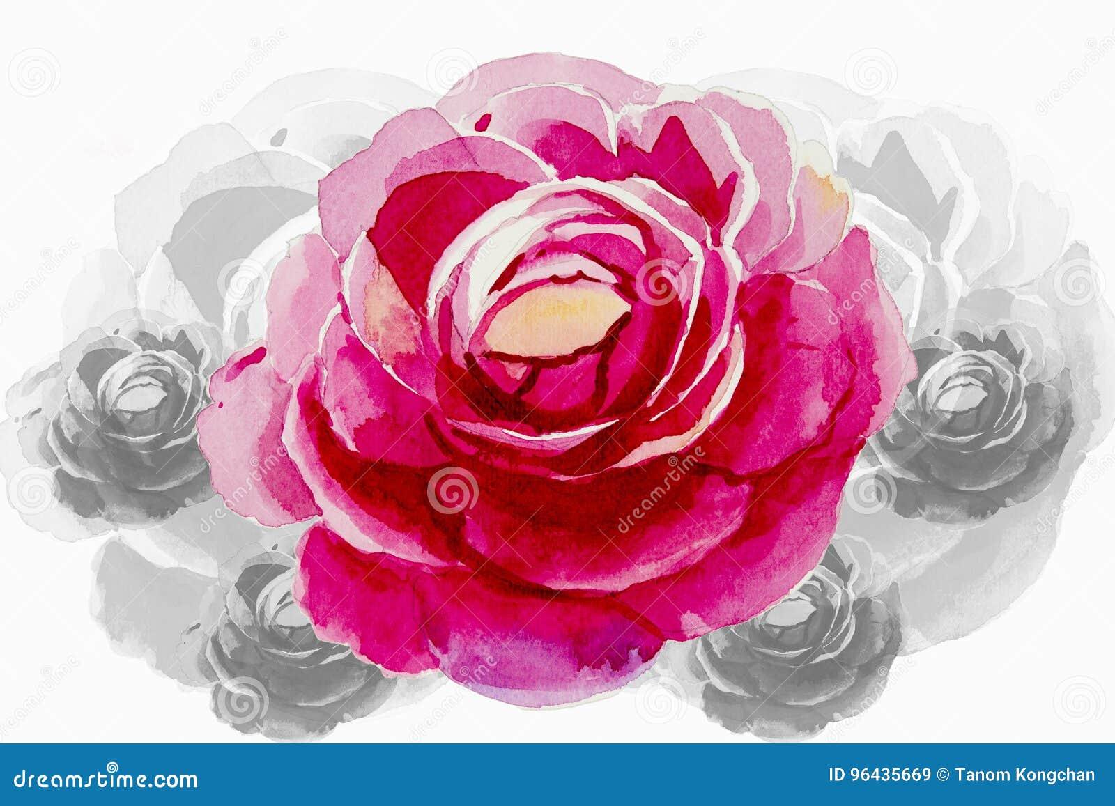 Fleur Rose De Peinture De Couleur Des Roses Illustration
