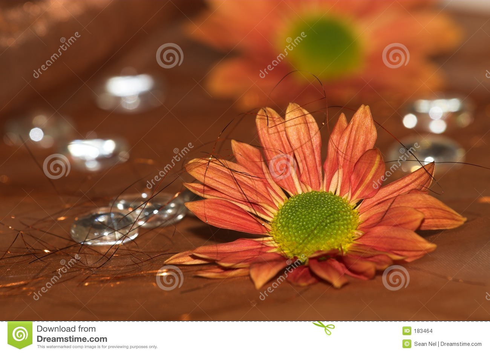 Fleurit #3