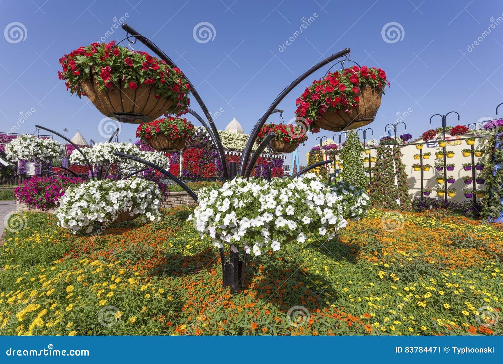 Fleurs au jardin de miracle duba photo ditorial for Fleurs au jardin