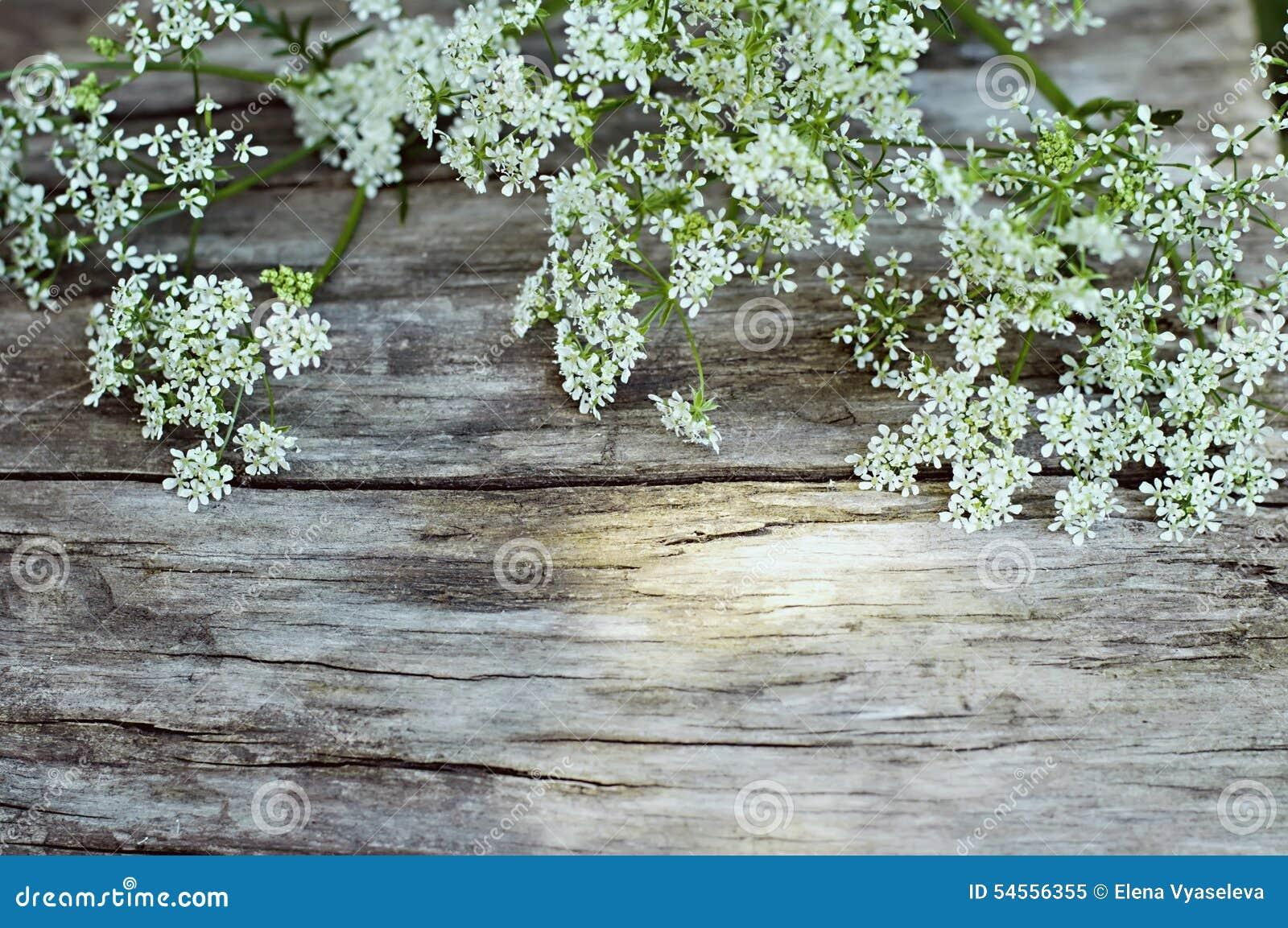 fleurs blanches d 39 t sur le fond en bois photo stock. Black Bedroom Furniture Sets. Home Design Ideas