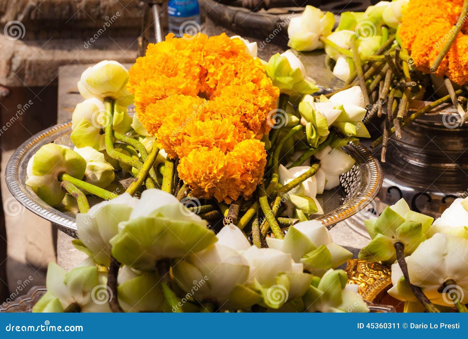 Fleurs bouddhistes