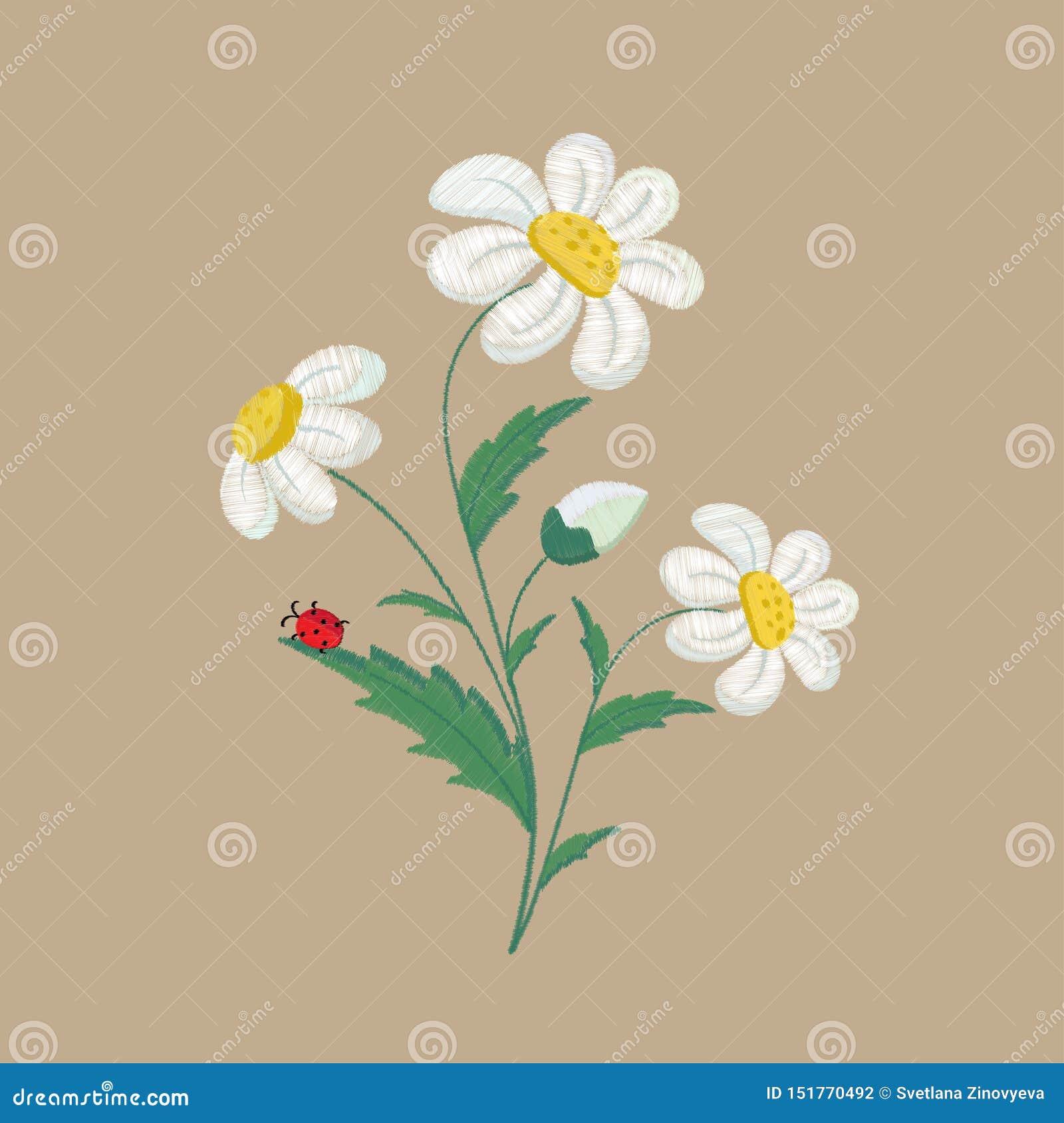 Fleurs brodées de camomille sur un fond brun Illustration de vecteur