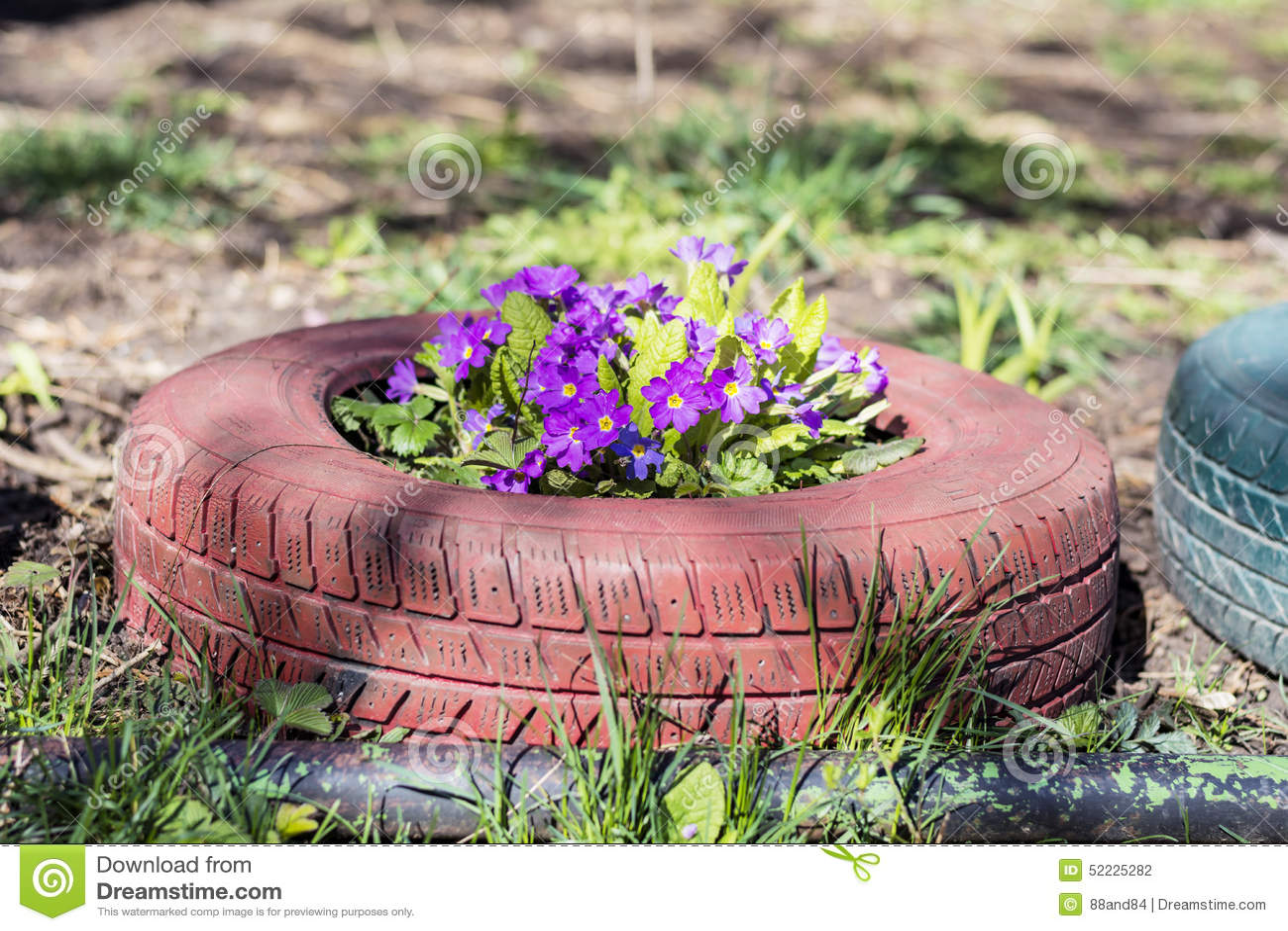 Pot De Fleur Avec Des Pneus fleurs color�es dans des pots de pneu photo stock - image du