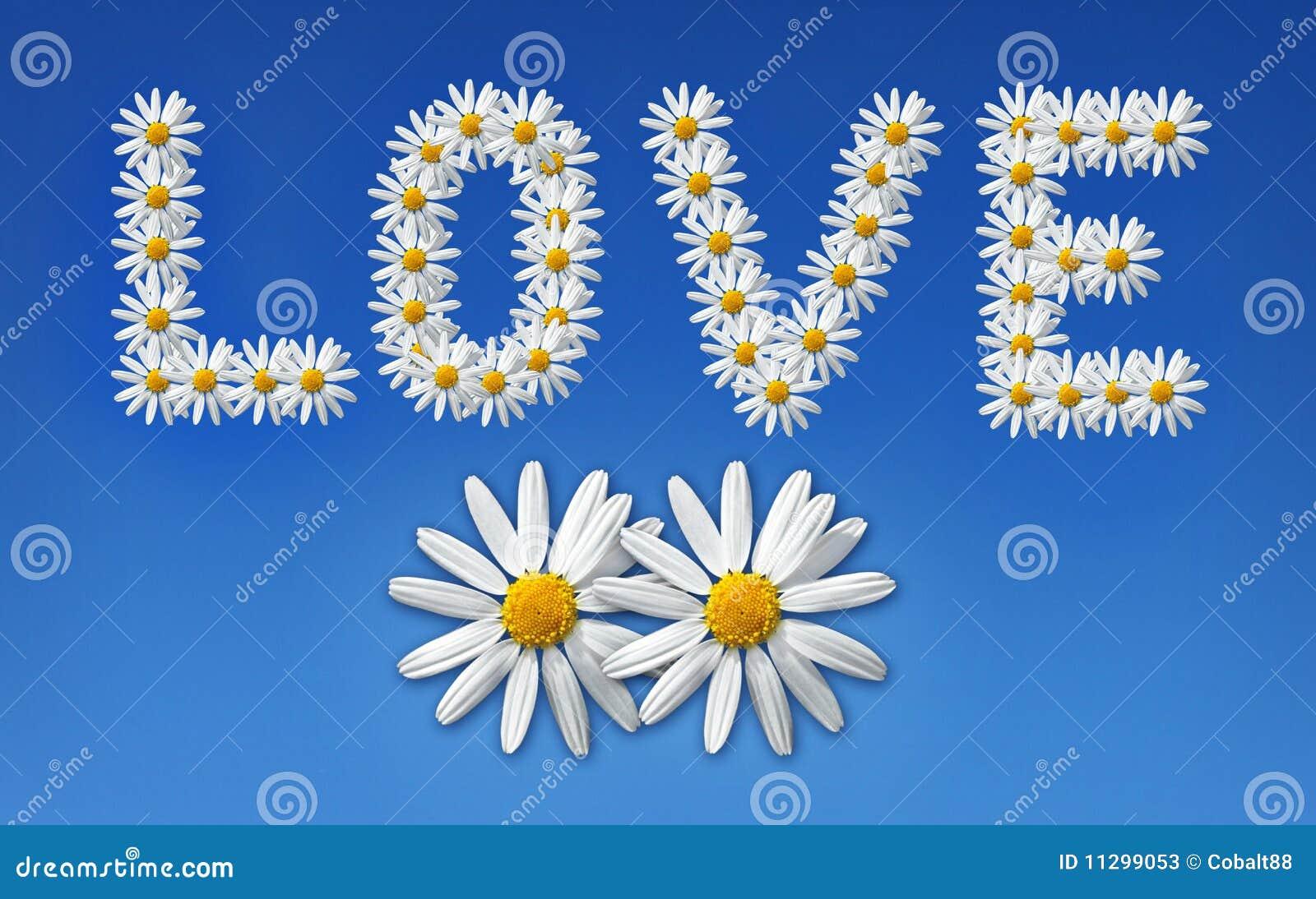 Fleurs d'amour image stock. Image du botanique, instruction - 11299053