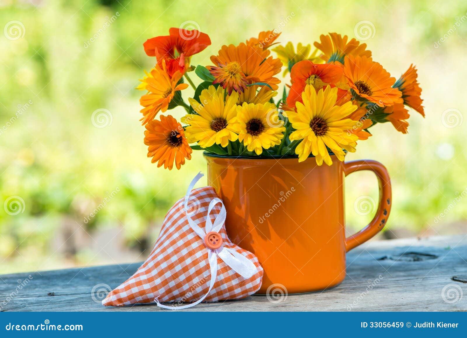 """Résultat de recherche d'images pour """"fleurs d'été"""""""
