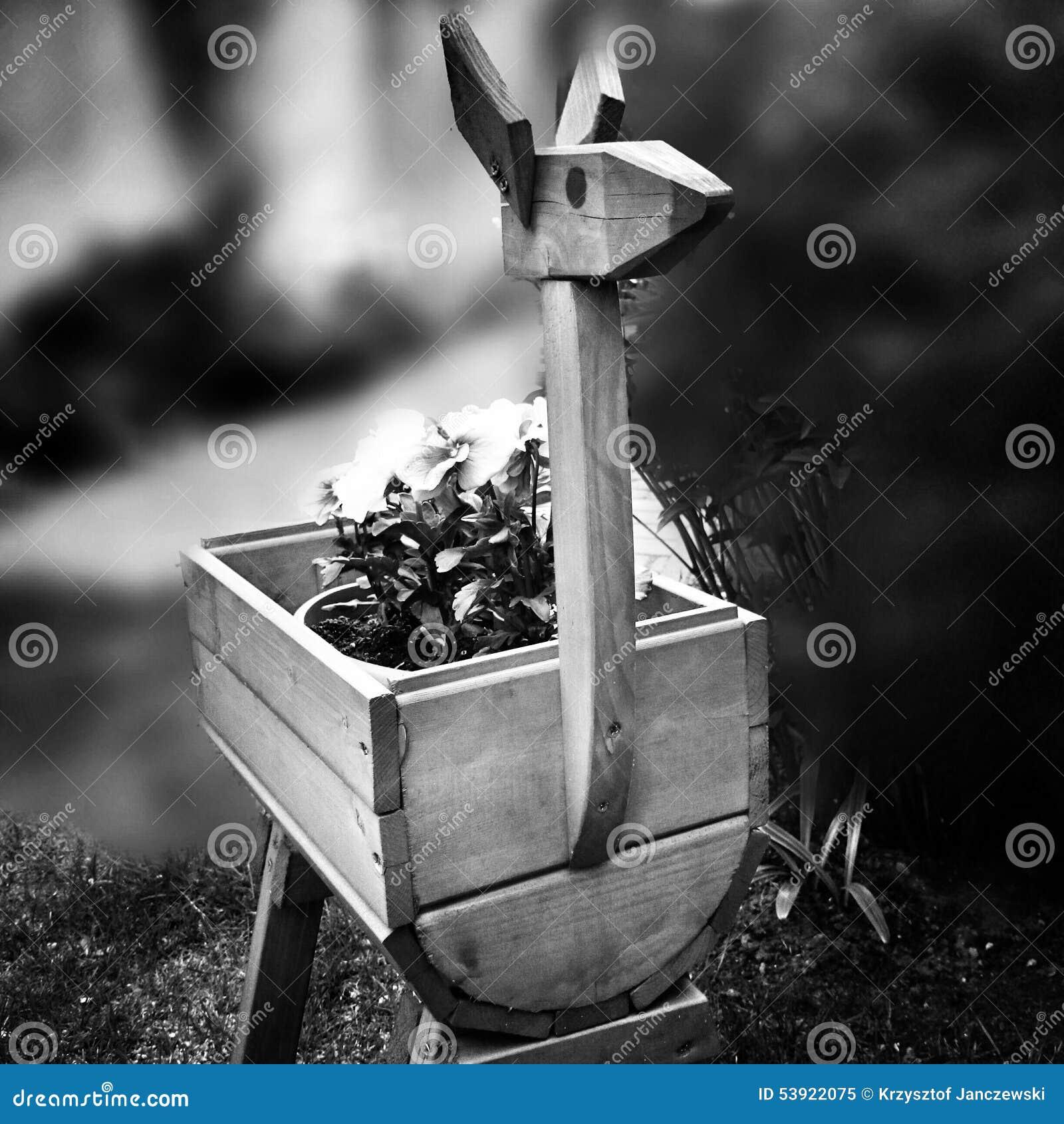 Fleurs dans le jardin regard artistique en noir et blanc for Jardin noir et blanc