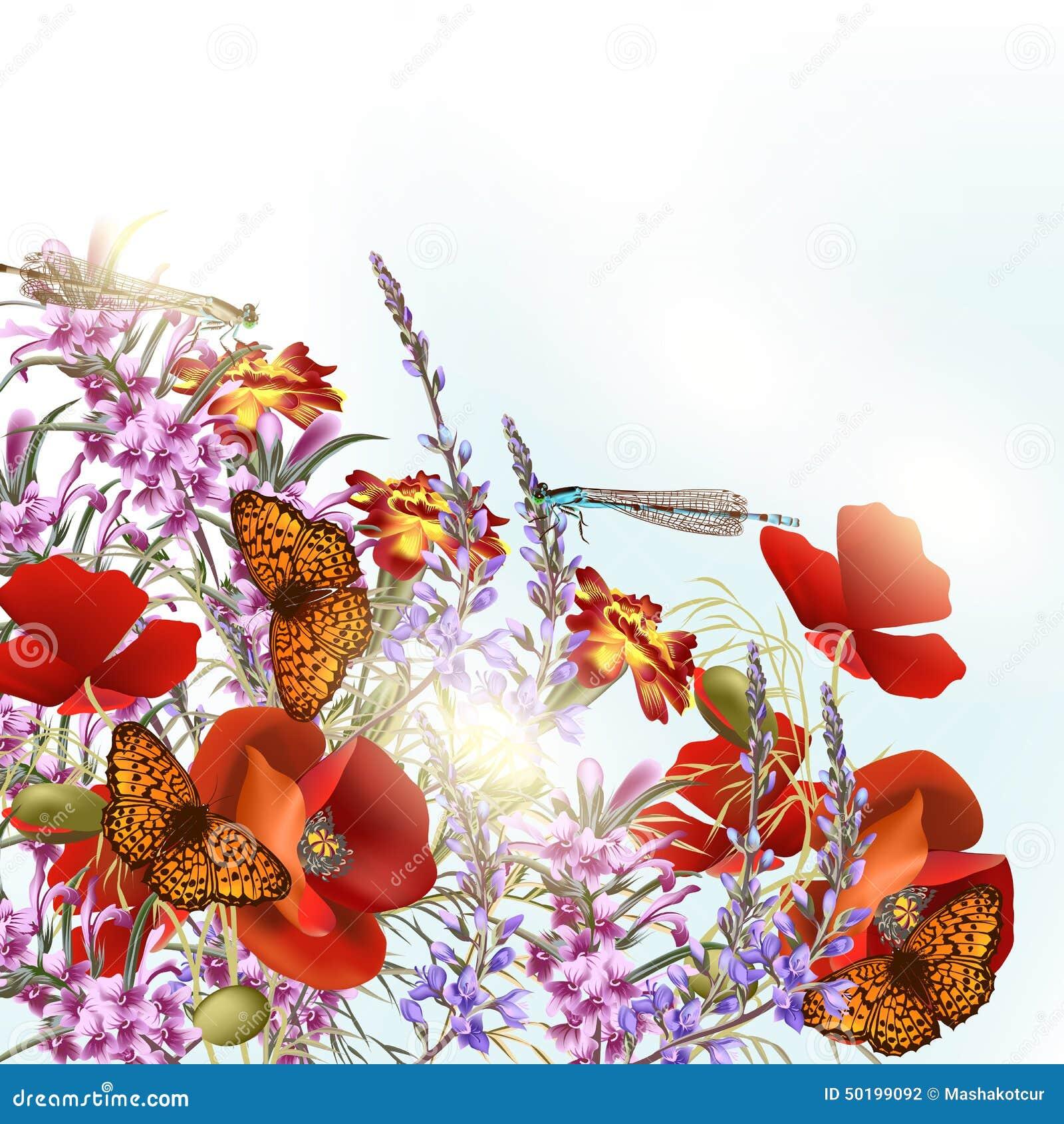 Fleurs de champ avec des papillons illustration de vecteur image 50199092 - Initiatives fleurs et nature ...
