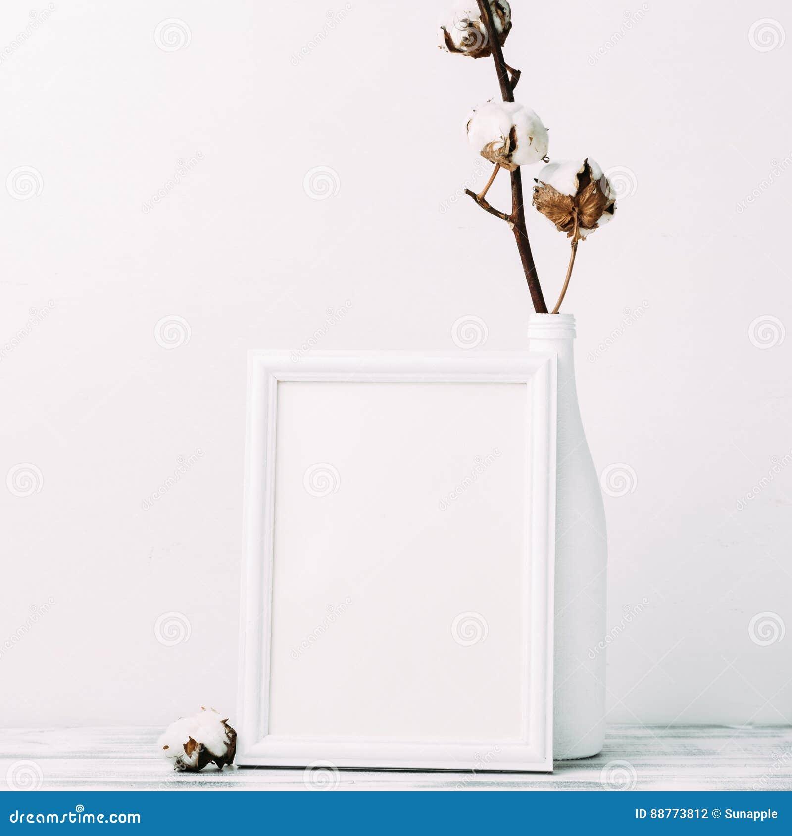 Fleurs De Coton Avec Le Cadre Vide Photo Stock Image Du