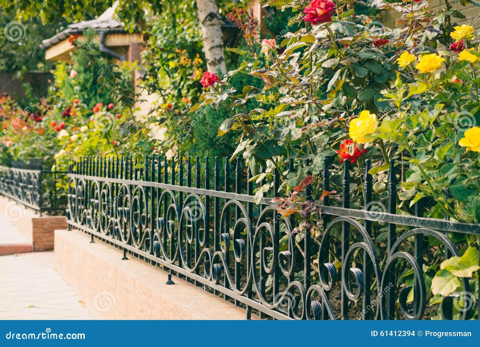 fleurs derrière une barrière devant la maison photo stock - image