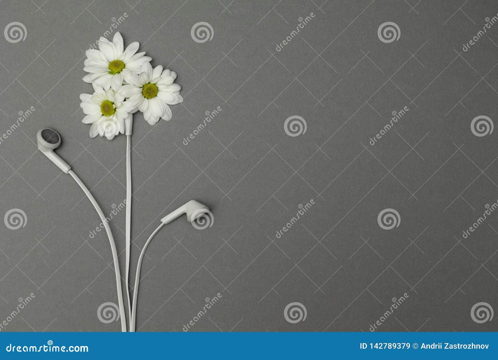 Fleurs et écouteurs, relaxation Concept