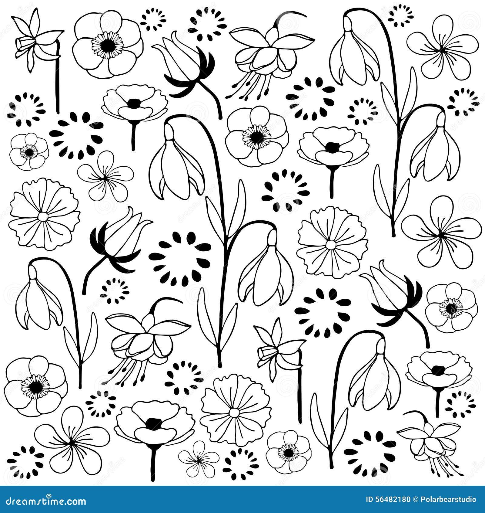 Fleurs et griffonnage tiré par la main de croquis de feuille