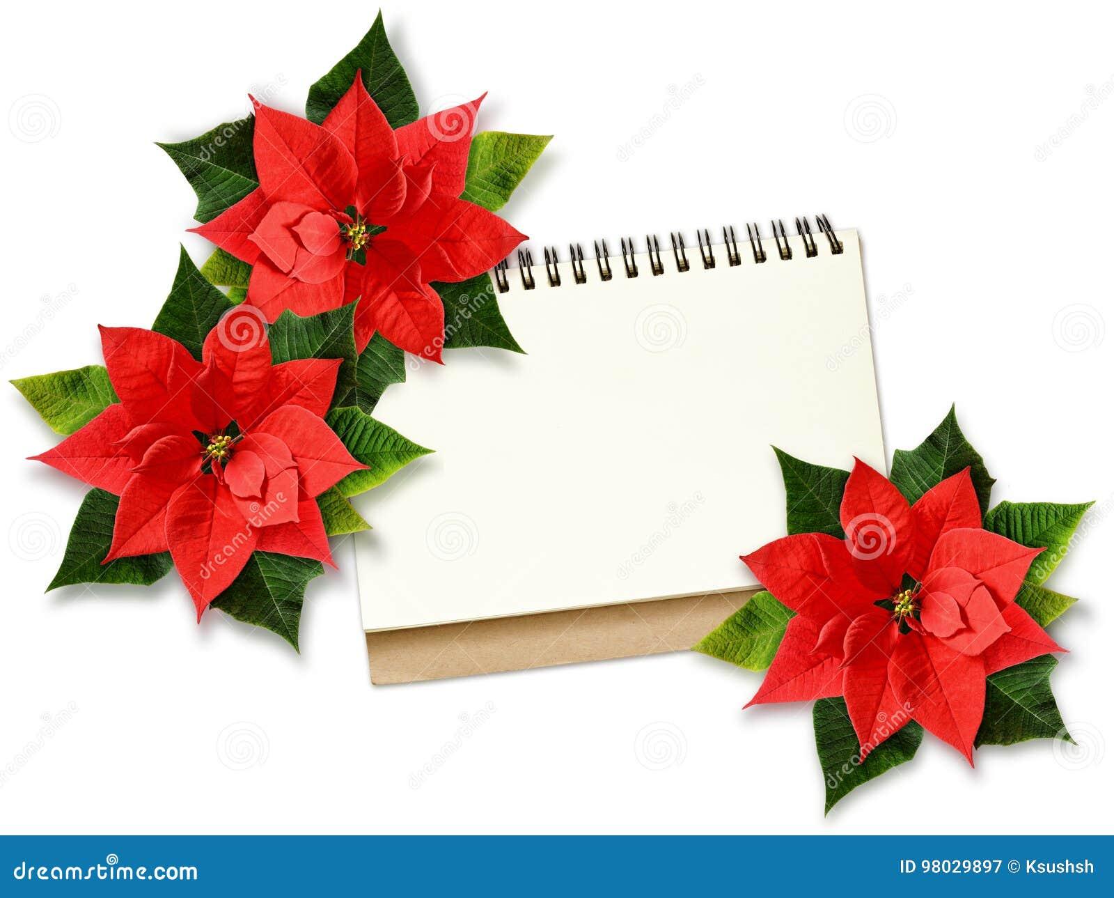 Fleurs et note de poinsettia de Noël