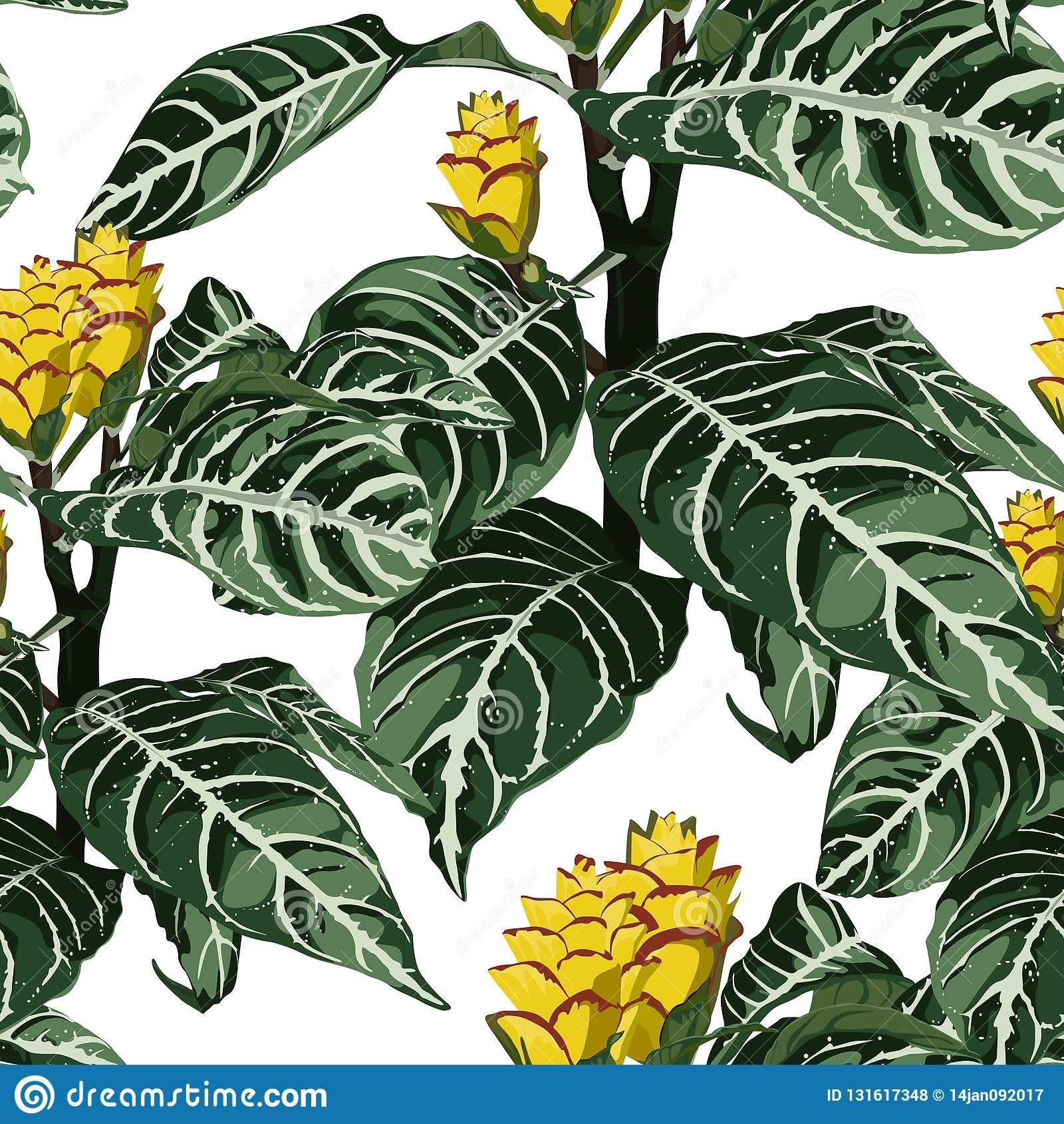 Fleurs exotiques de floraison tropicales colorées tirées par la main, modèle sans couture botanique floral et de feuilles