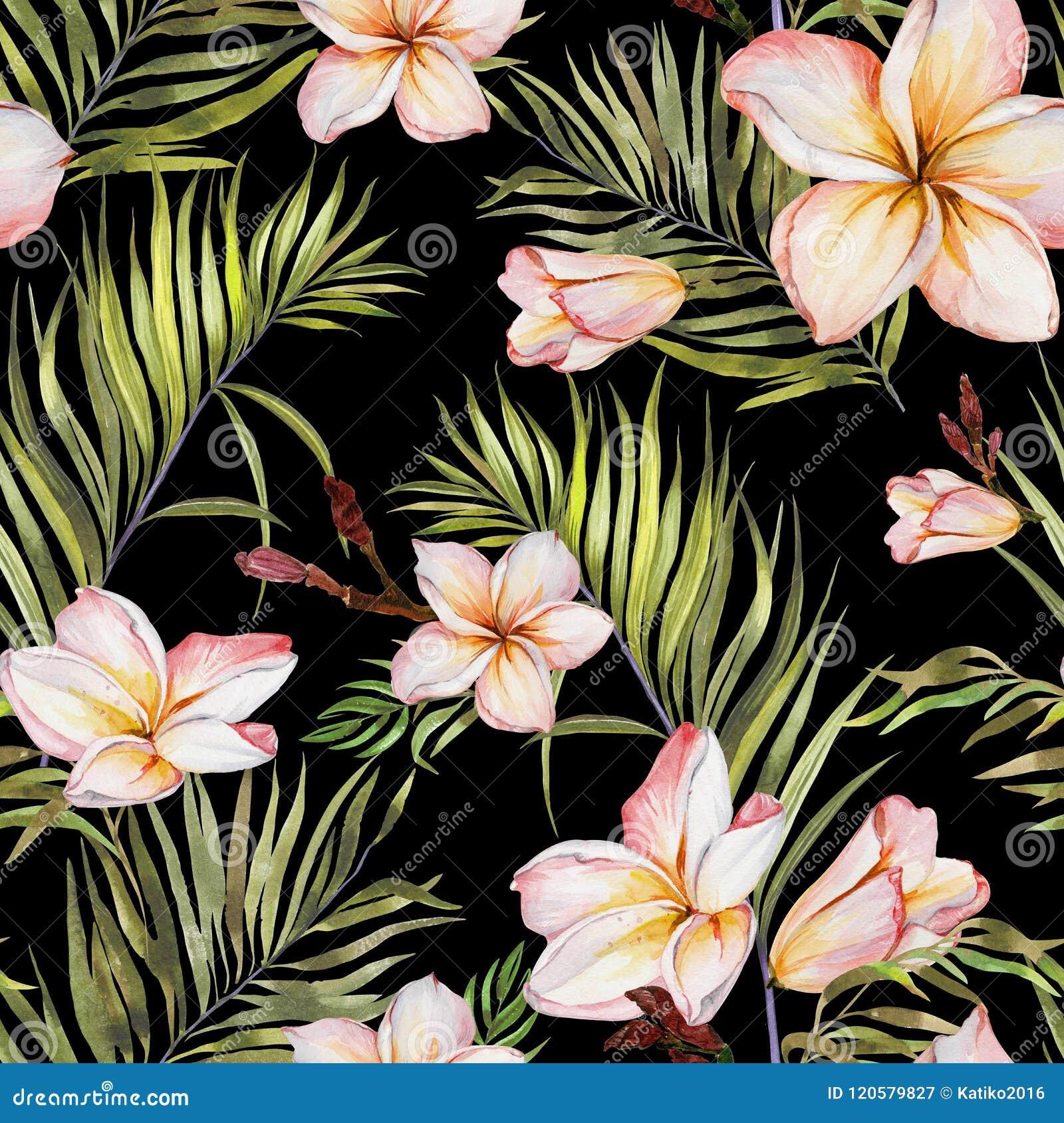 Fleurs exotiques de plumeria et palmettes vertes sur le fond noir Configuration tropicale sans joint Peinture d aquarelle