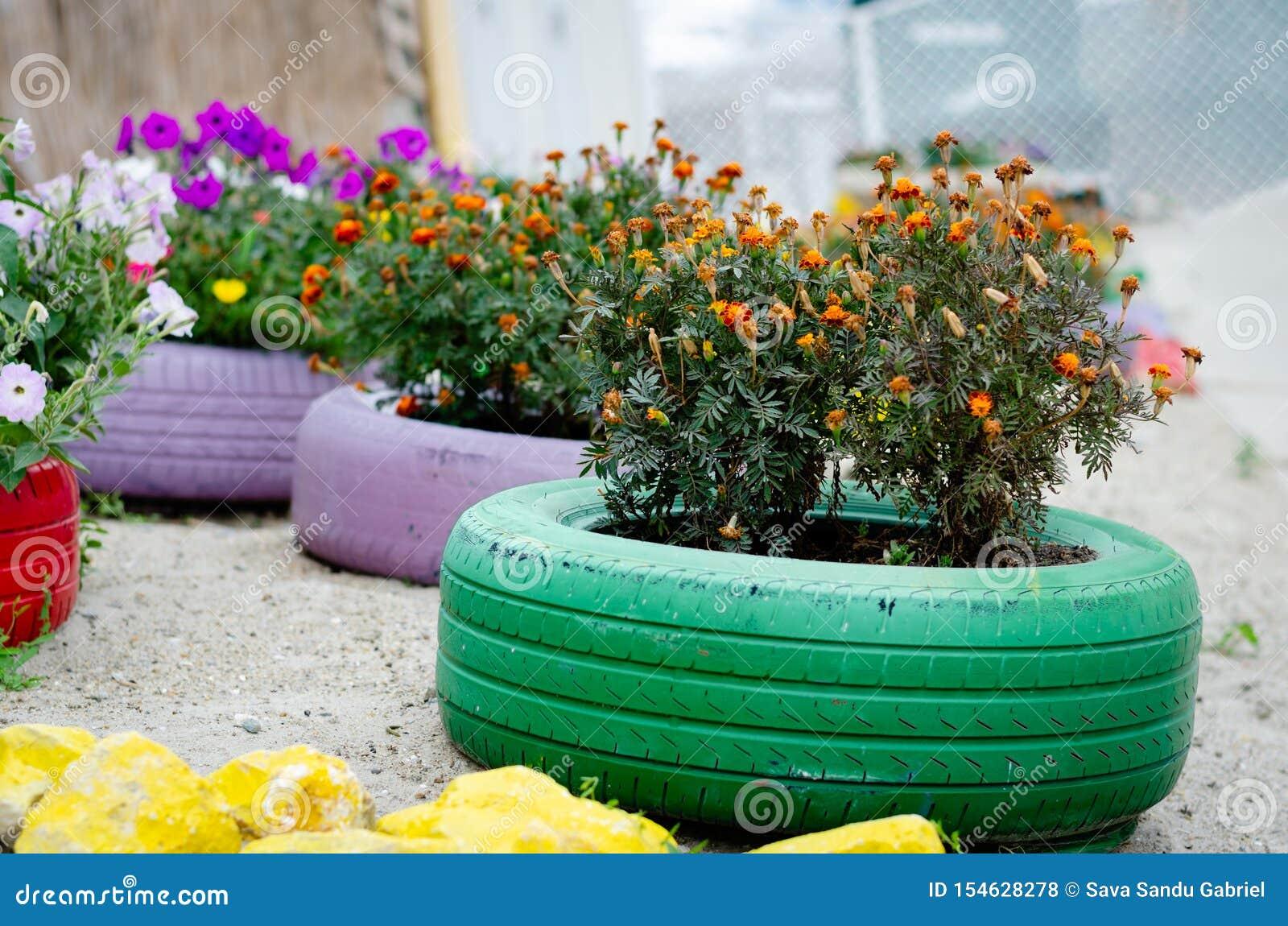 Pot De Fleur Avec Des Pneus fleurs fleurissant dans des pots faits de pneus de voiture