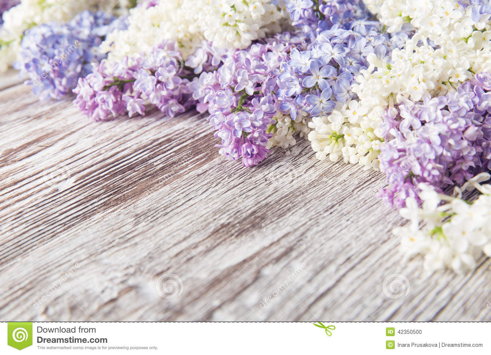 Fleurs lilas sur le fond en bois branche de fleur sur le for Achat branche bois
