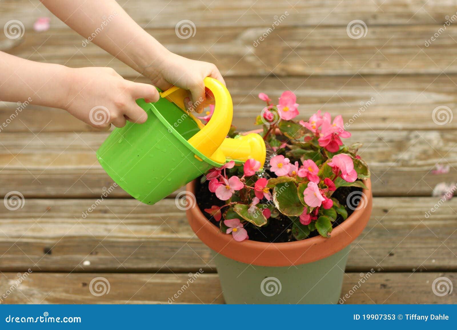 fleurs mises en pot de arrosage de fille photos stock image 19907353
