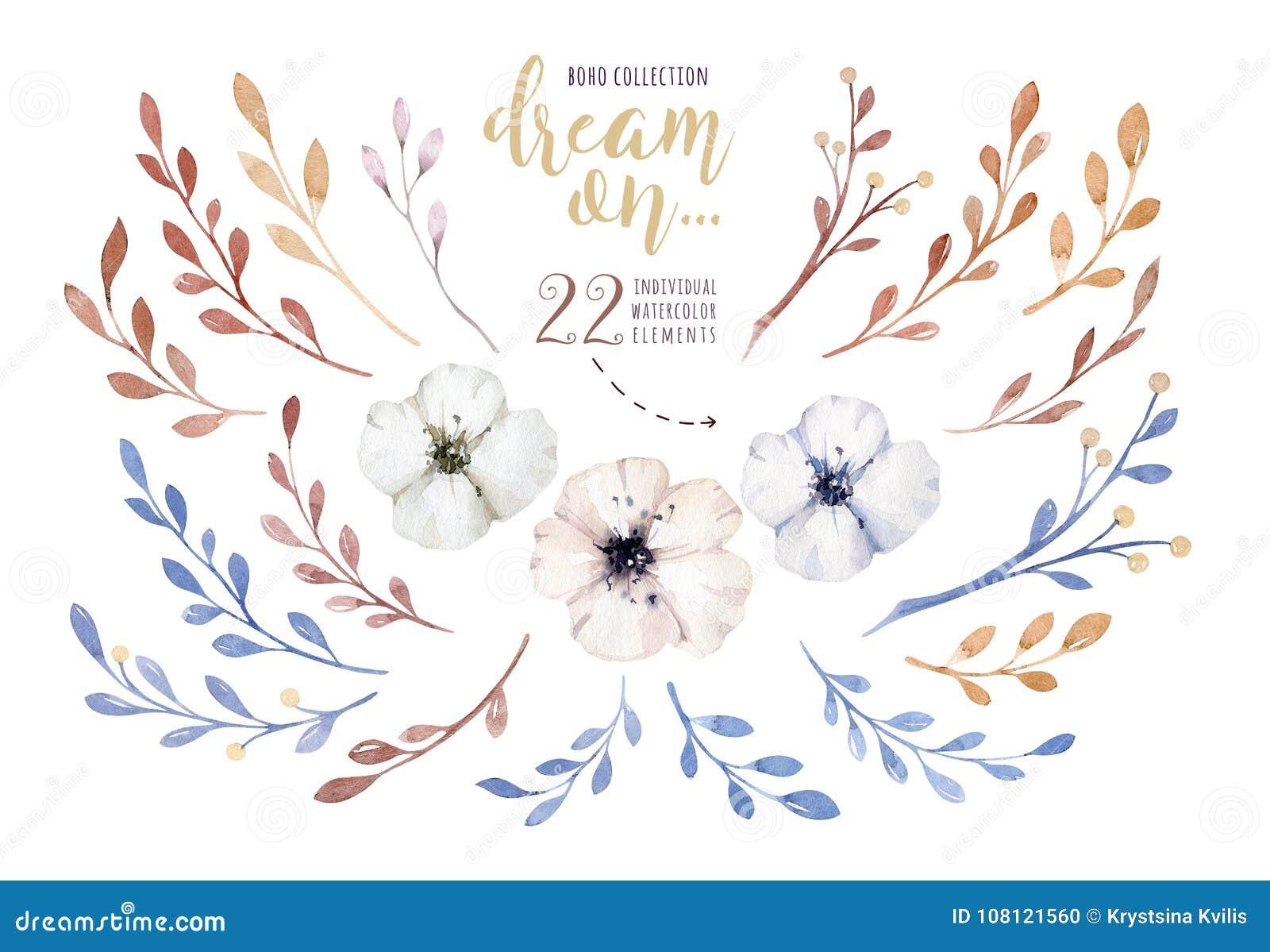 Fleurs peintes à la main d aquarelle réglées dans le style de vintage Il ` s parfait pour des cartes de voeux, invitation de mari