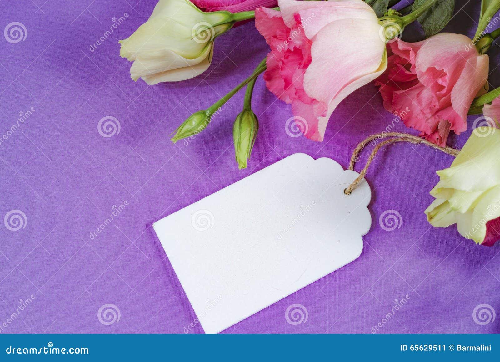 Fleurs roses et blanches sur le fond pourpre, disposition avec l espace de texte libre, concept de carte de voeux, étiquette en b