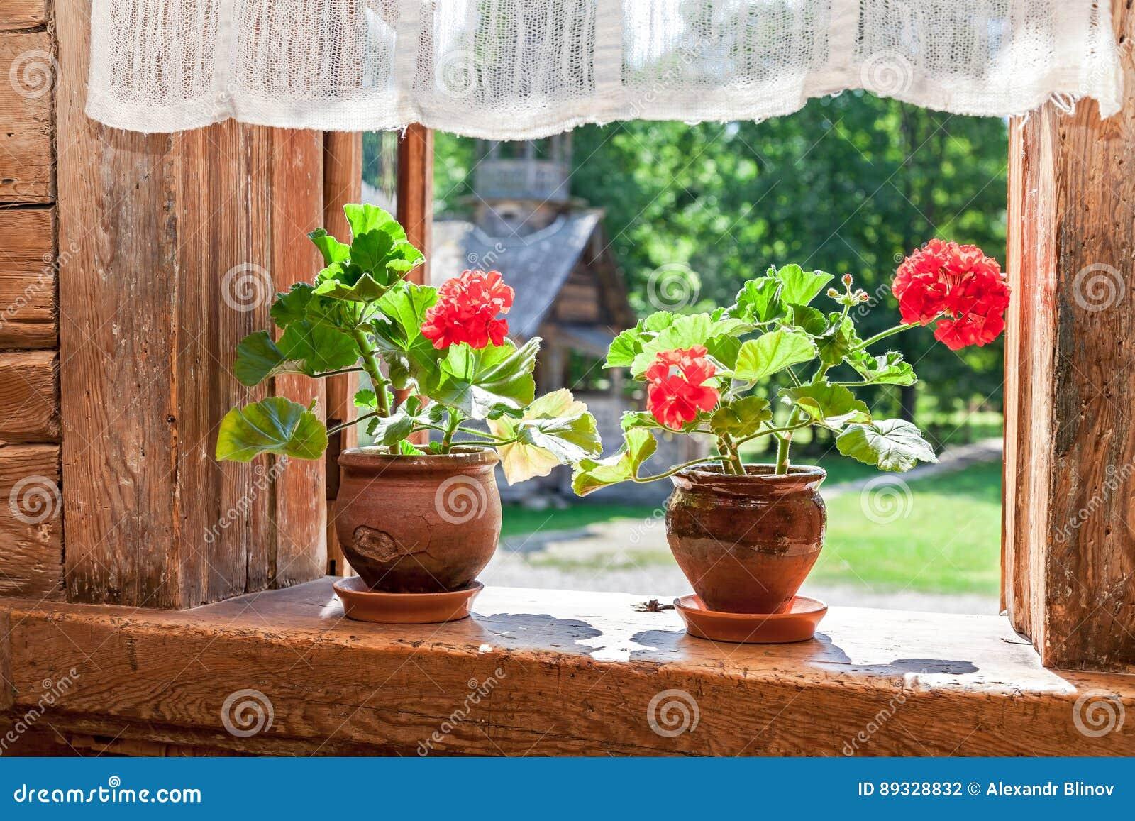 Fleurs Rouges De Géranium Sur La Fenêtre De La Vieille Maison En Bois Rurale