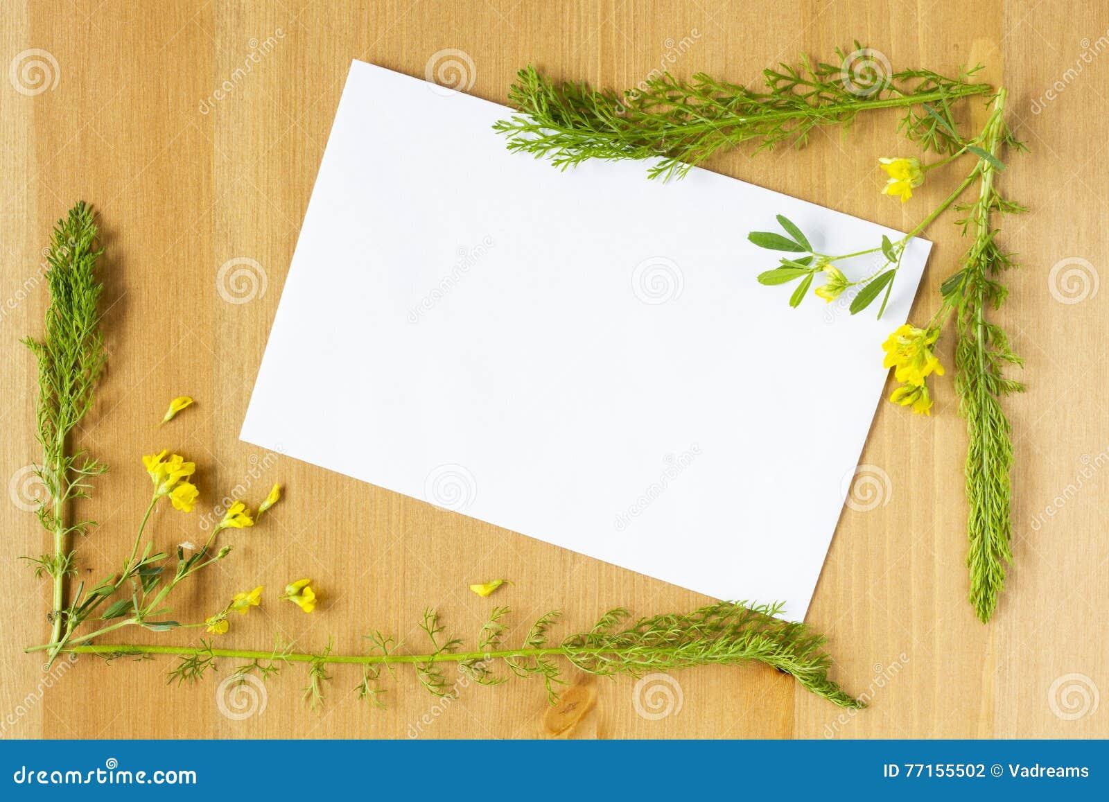Fleurs sauvages et feuilles de pré disposées comme cadre sur le fond en bois Feuille de papier vide au milieu Vue supérieure plat