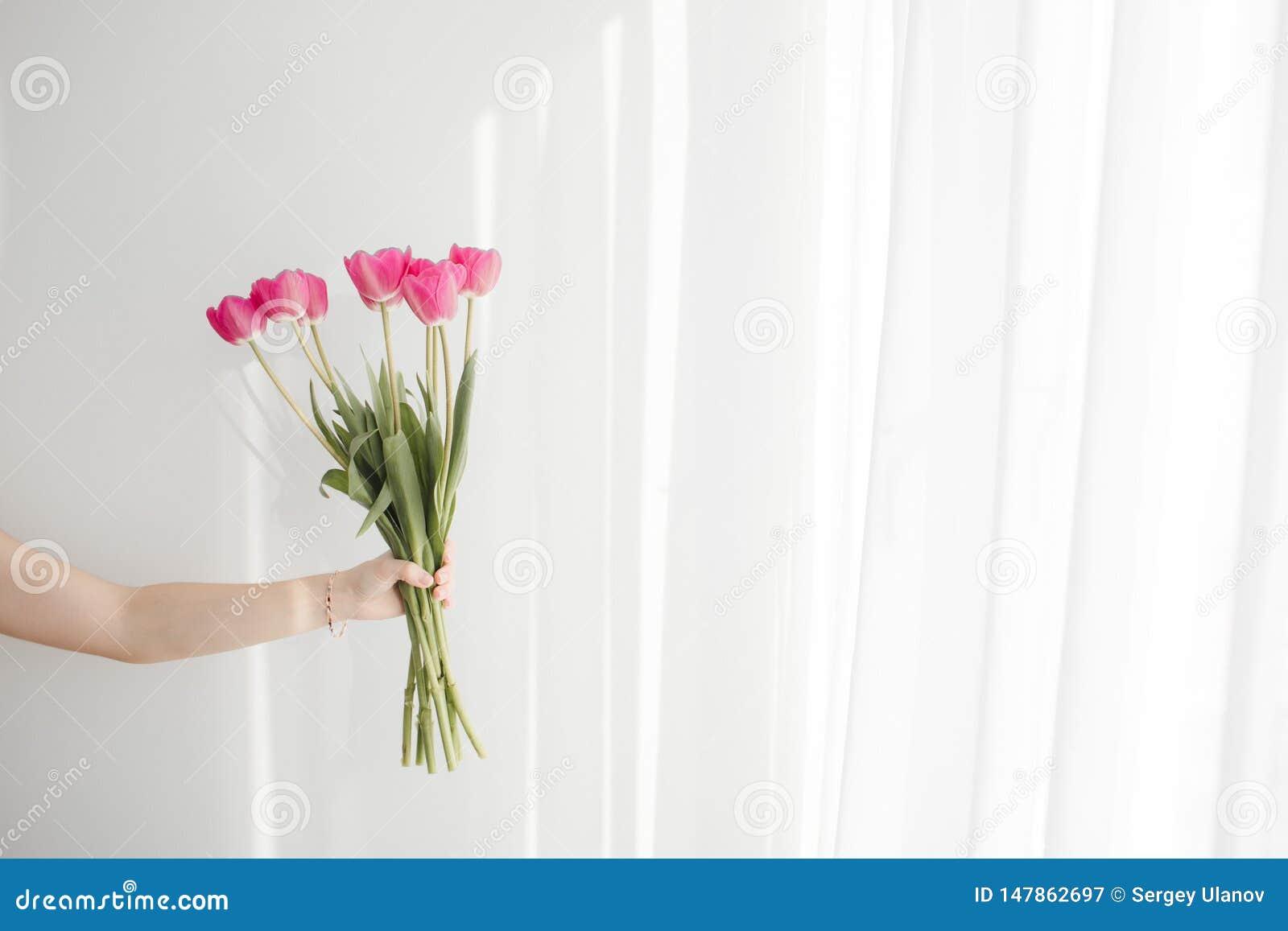 Fleurs sur le fond blanc avec la belle lumière