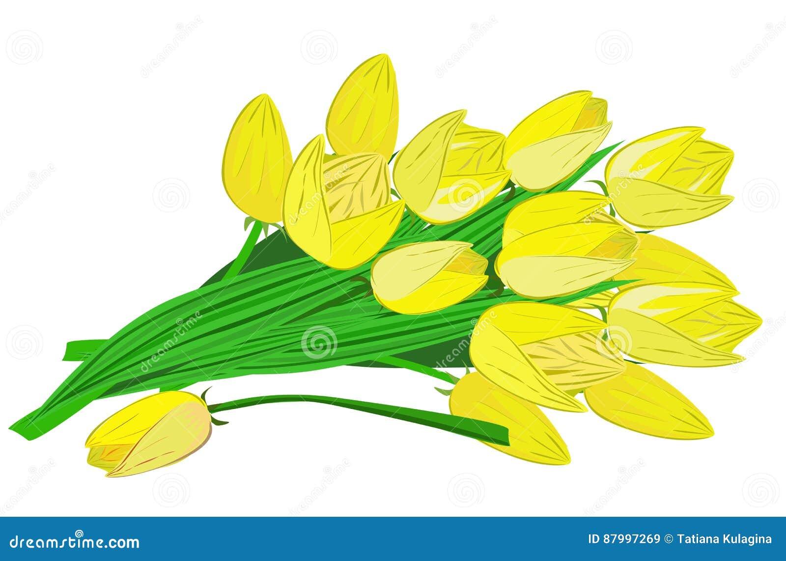 Fleurs Sur Un Fond Transparent Image stock , Illustration du