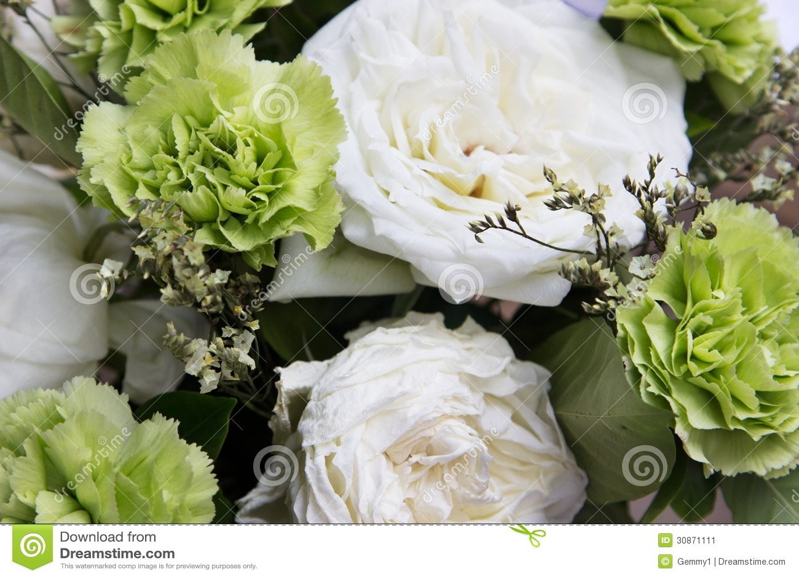 Fleurs vertes et blanches