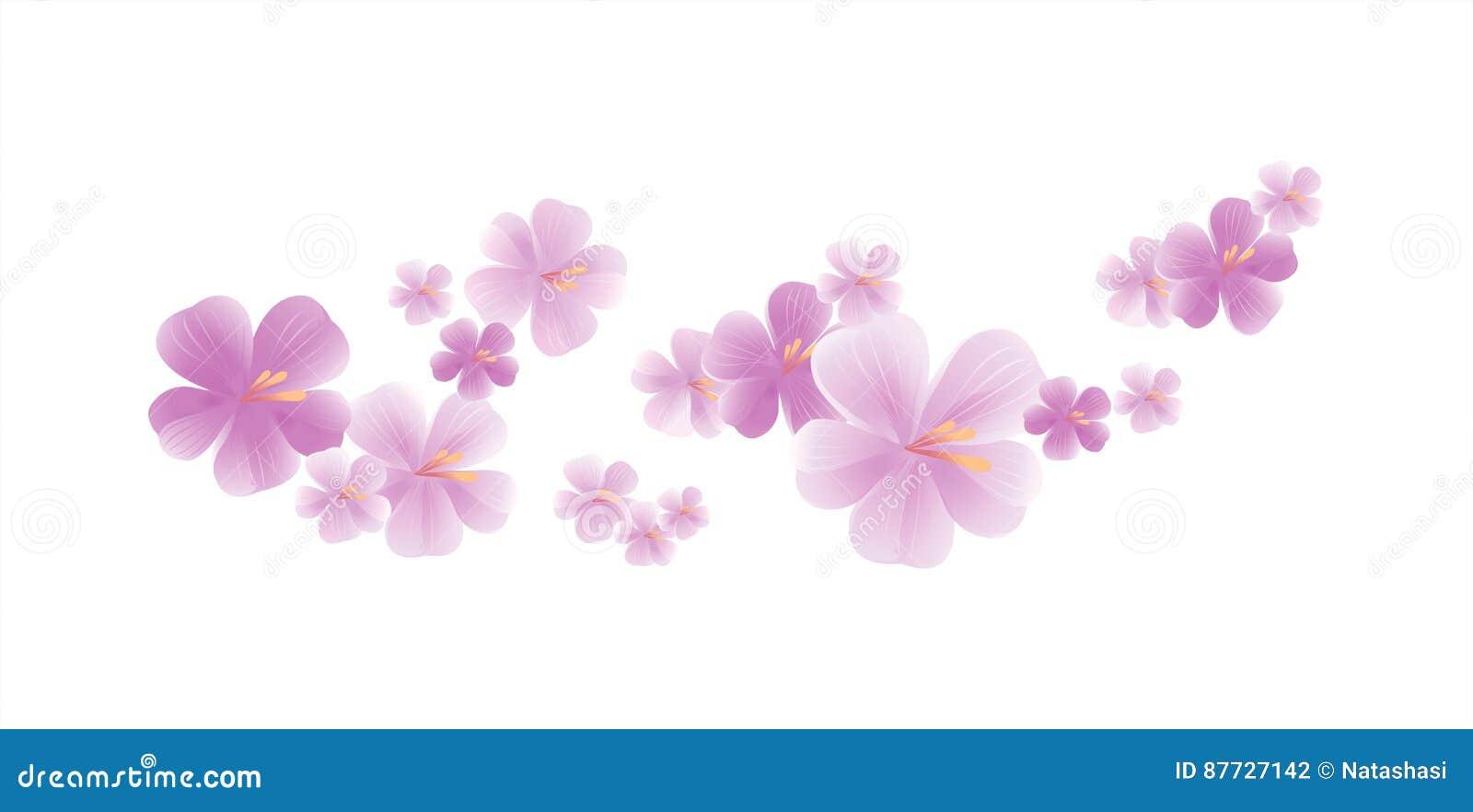 Fleurs Violettes Mauve Clair Volantes D Isolement Sur Le Fond Blanc
