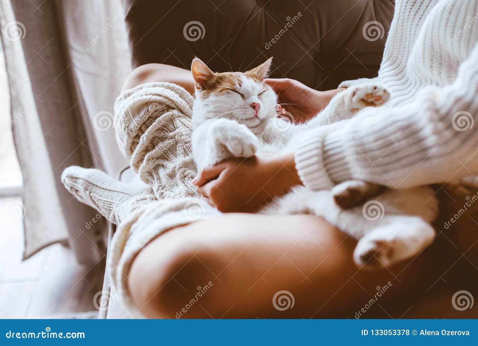 Flicka med katten som kopplar av på en soffa