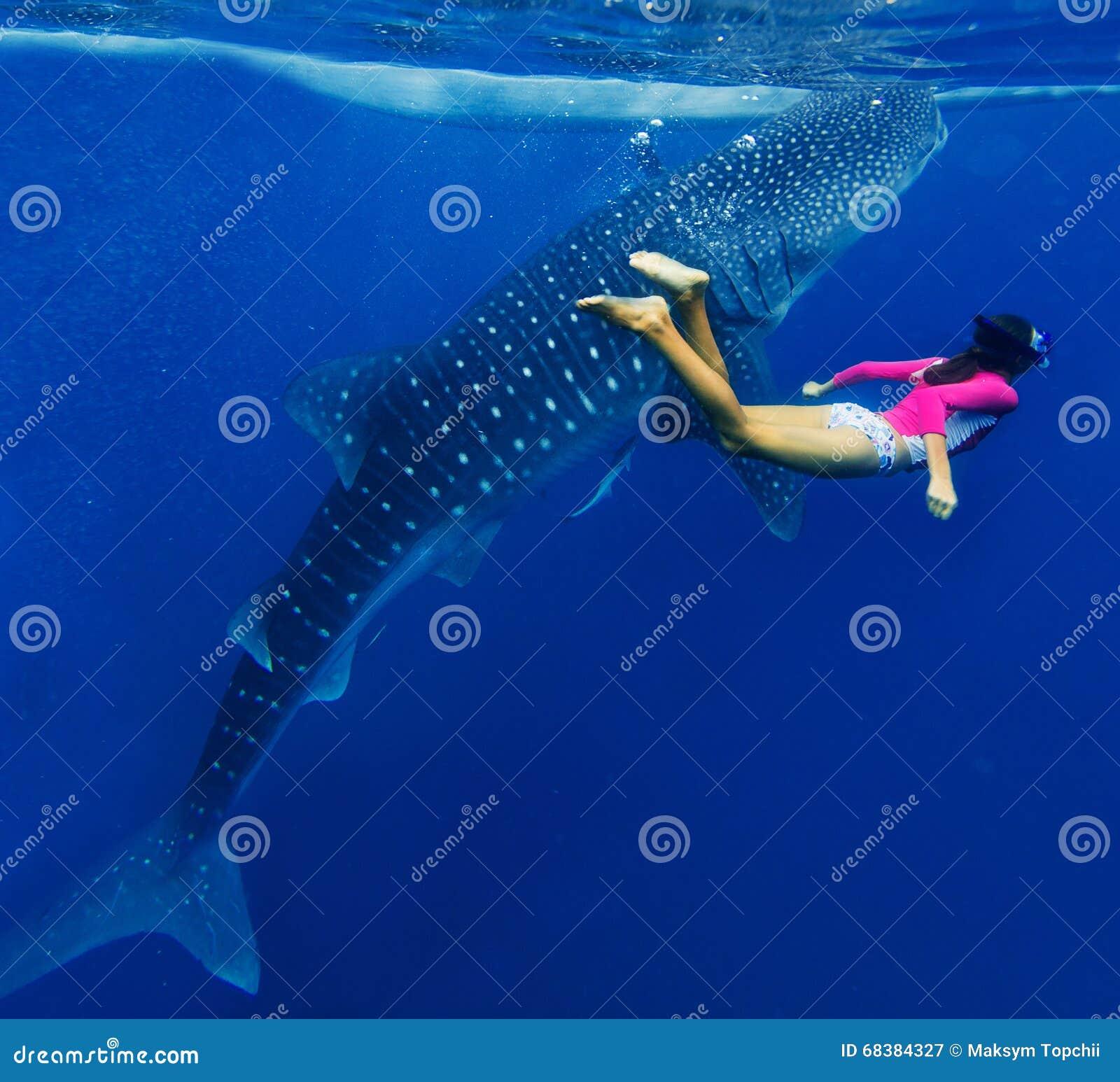 Flicka som snorklar med valhajen