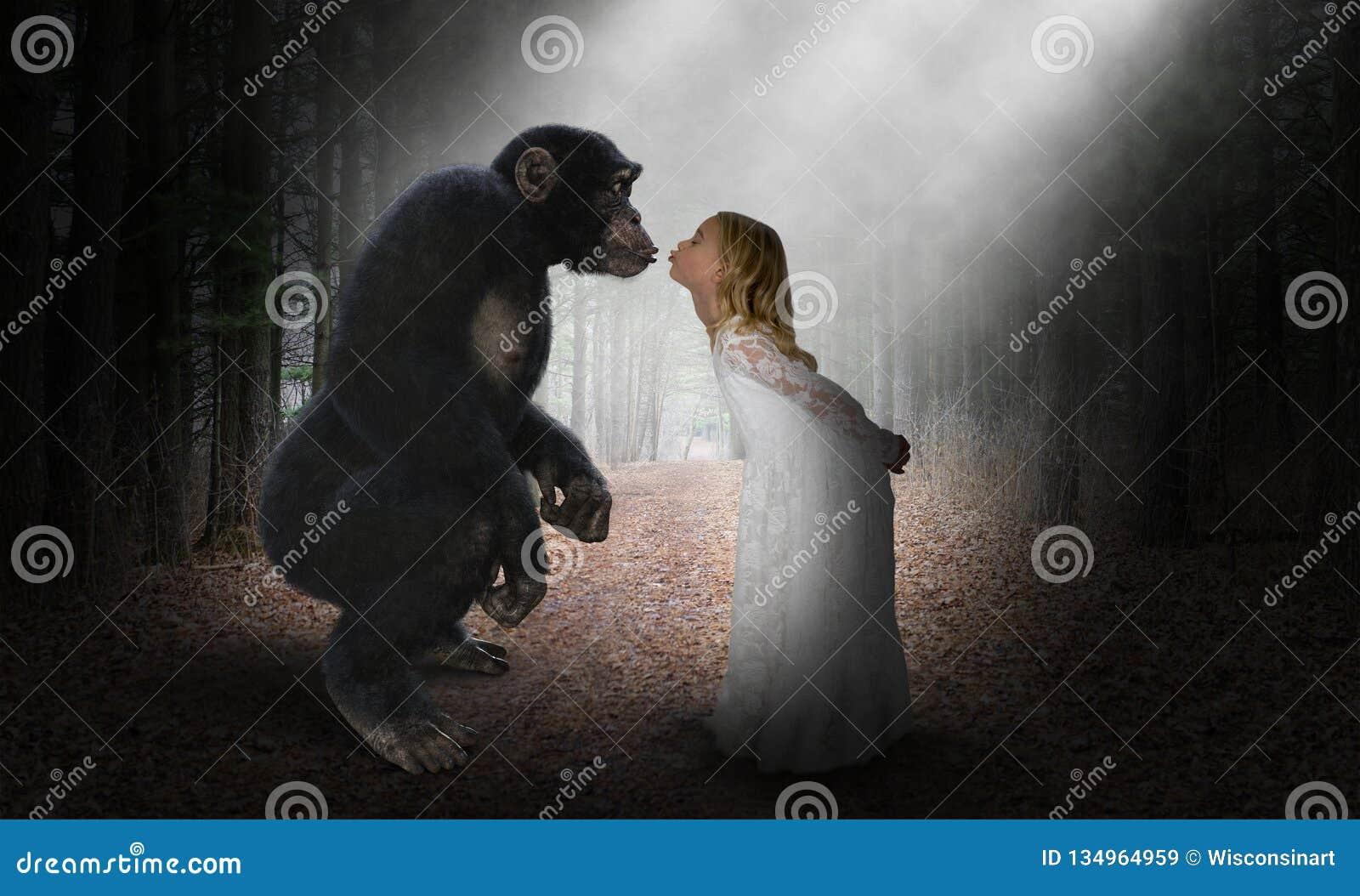 Flickakyssschimpans, natur, förälskelse, hopp