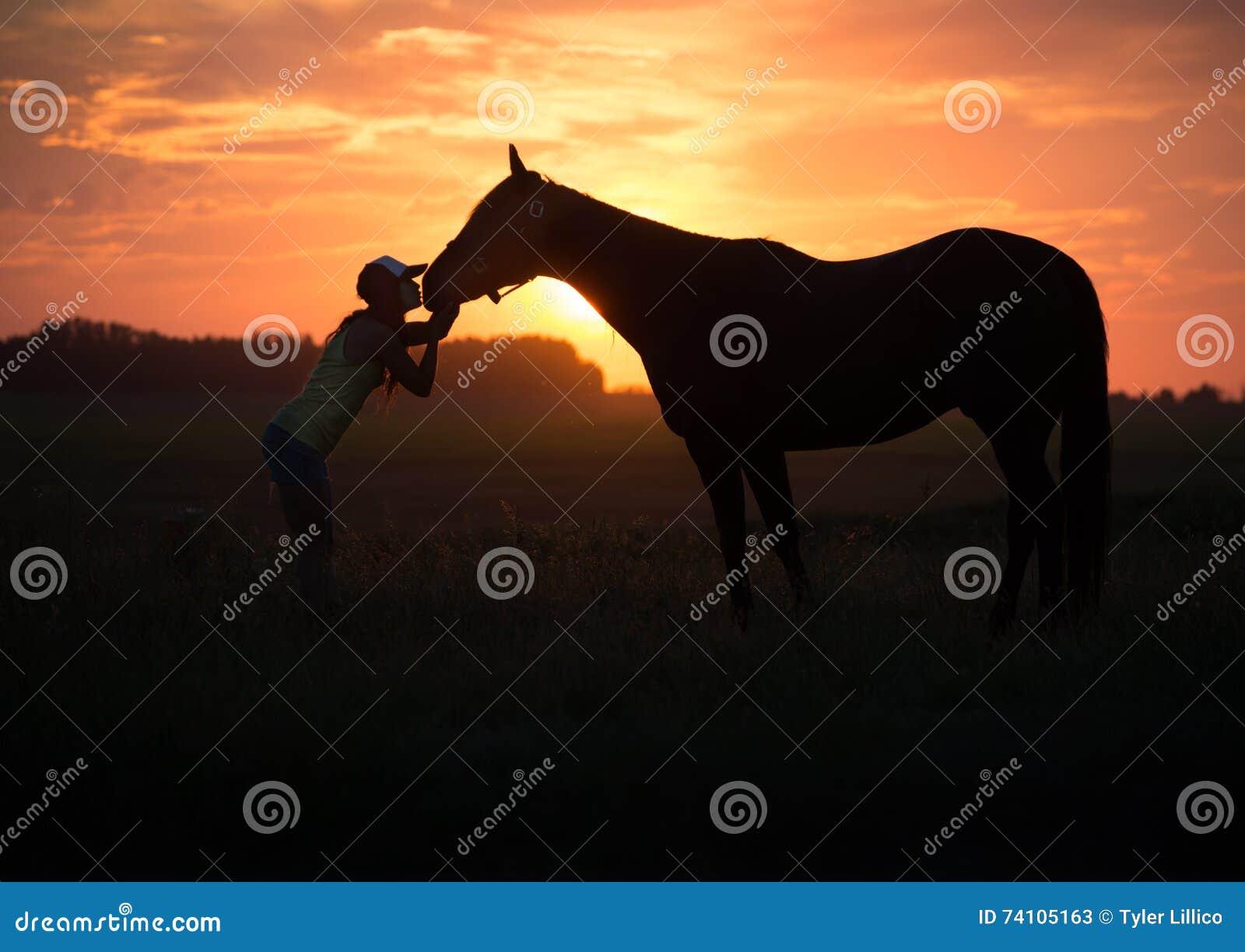 Flickan kysser hennes häst på solnedgången