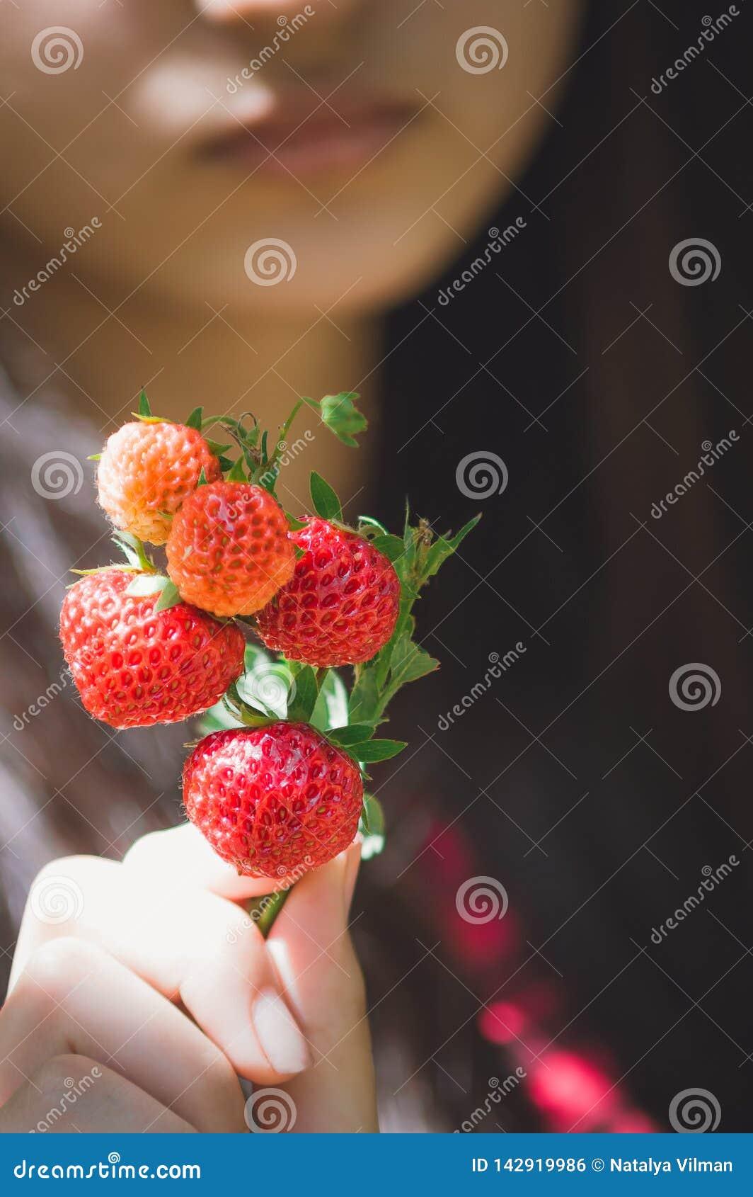 Flickan rymmer jordgubbar i hennes händer Närbild selektiv fokus