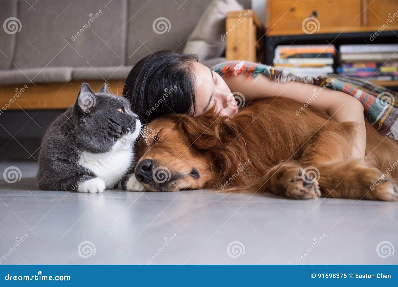 Flickasömn med katter och hundkapplöpning