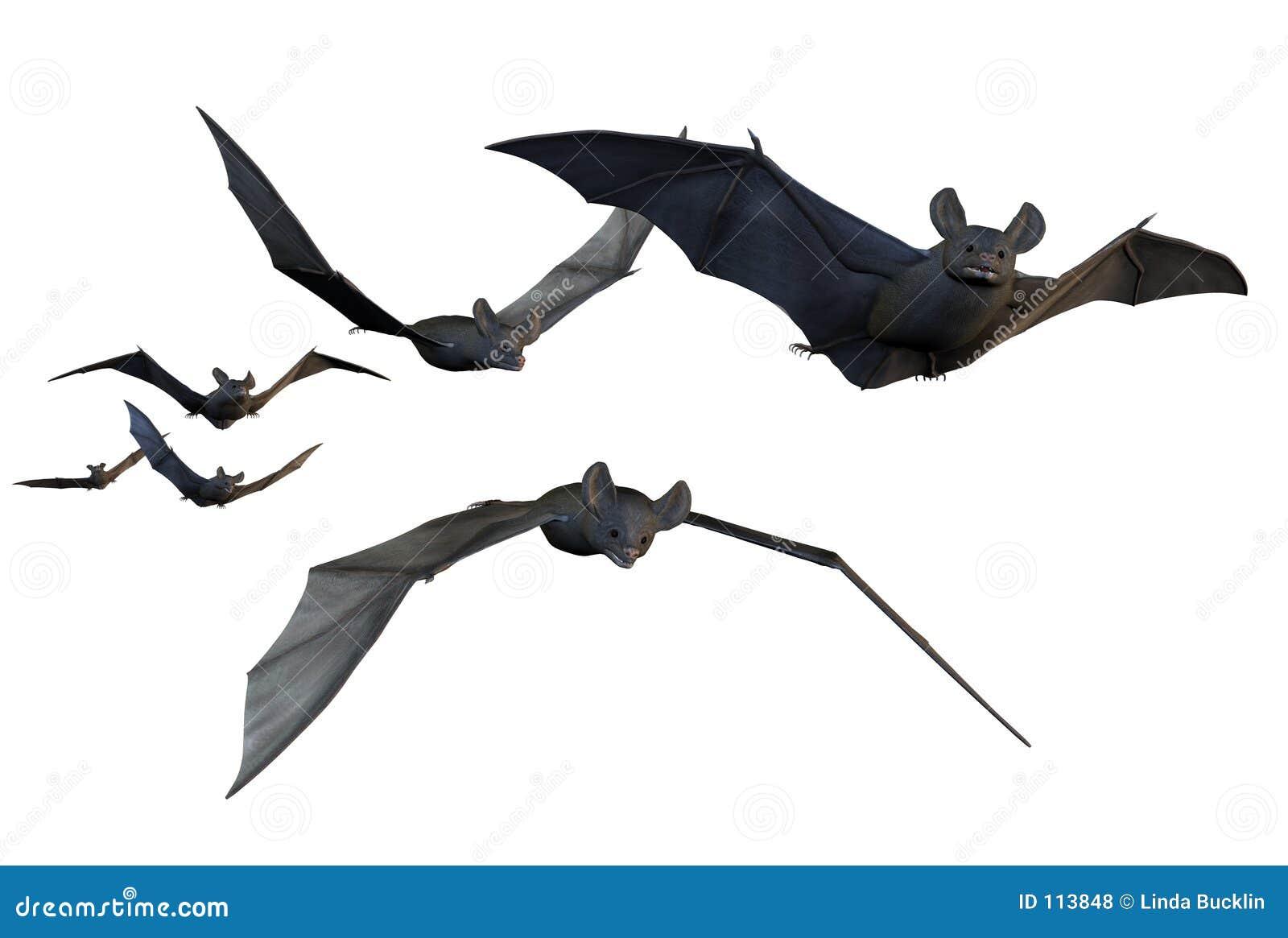 Fliegende Hiebe - enthält Ausschnittspfad