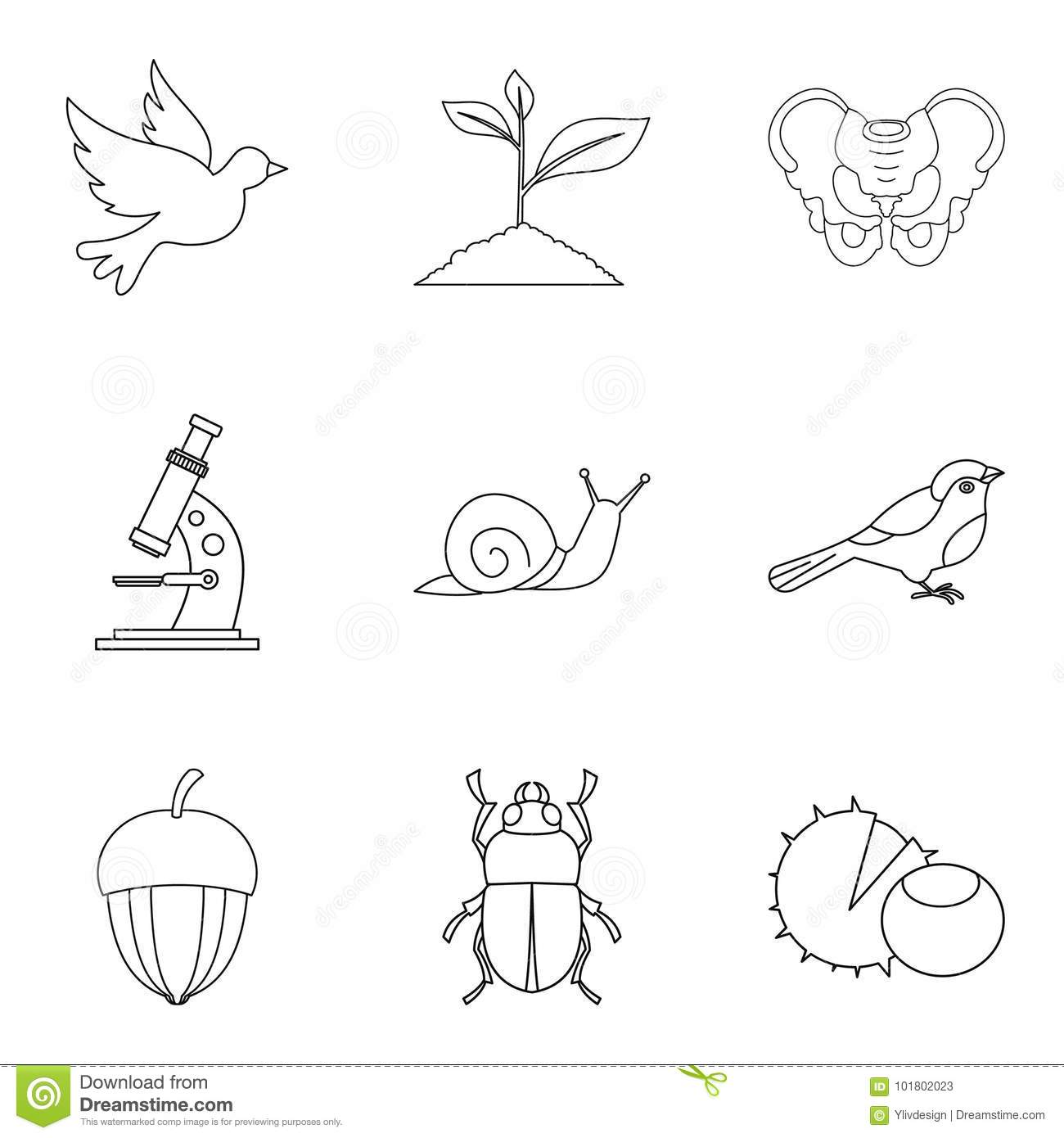 Flier icons set, outline style
