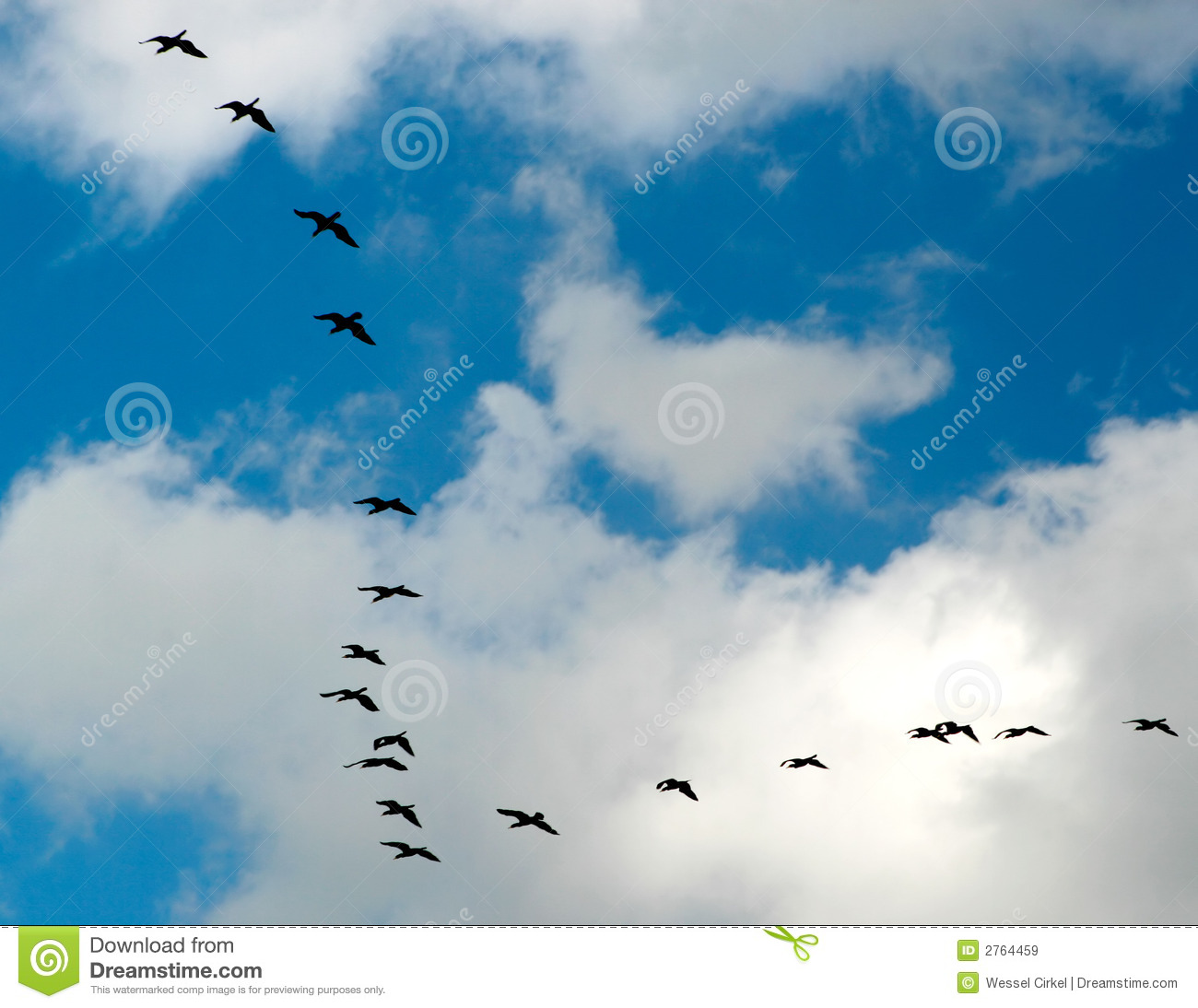 A Flight Of Geese Royalty Free Stock Images - Image: 2764459