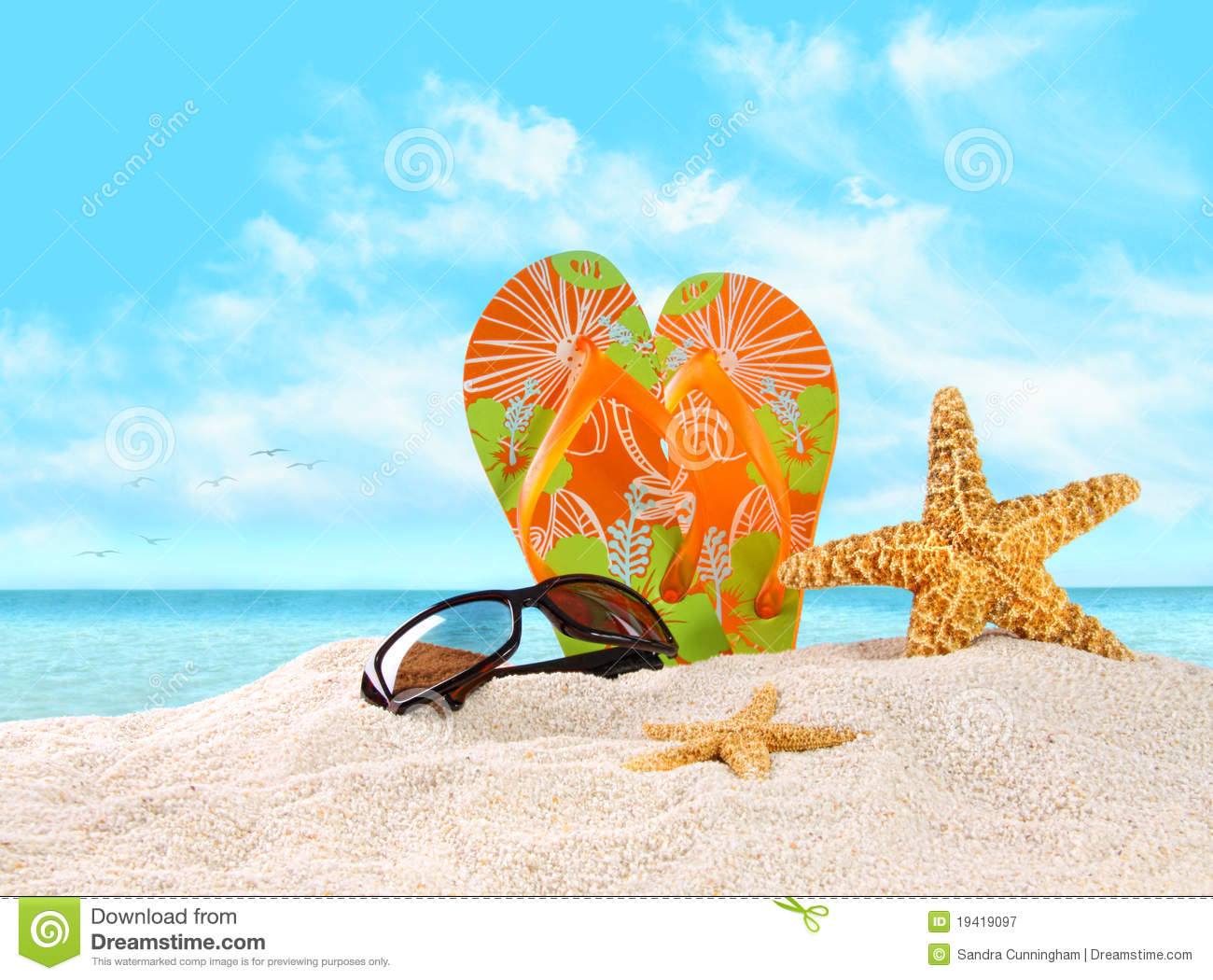 flip flops in the sand with starfish stock image image