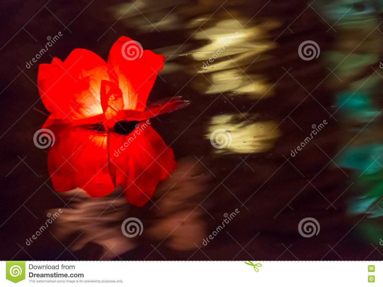 Floating Lotus Flower Paper Lanterns On Water Stock Image Image Of
