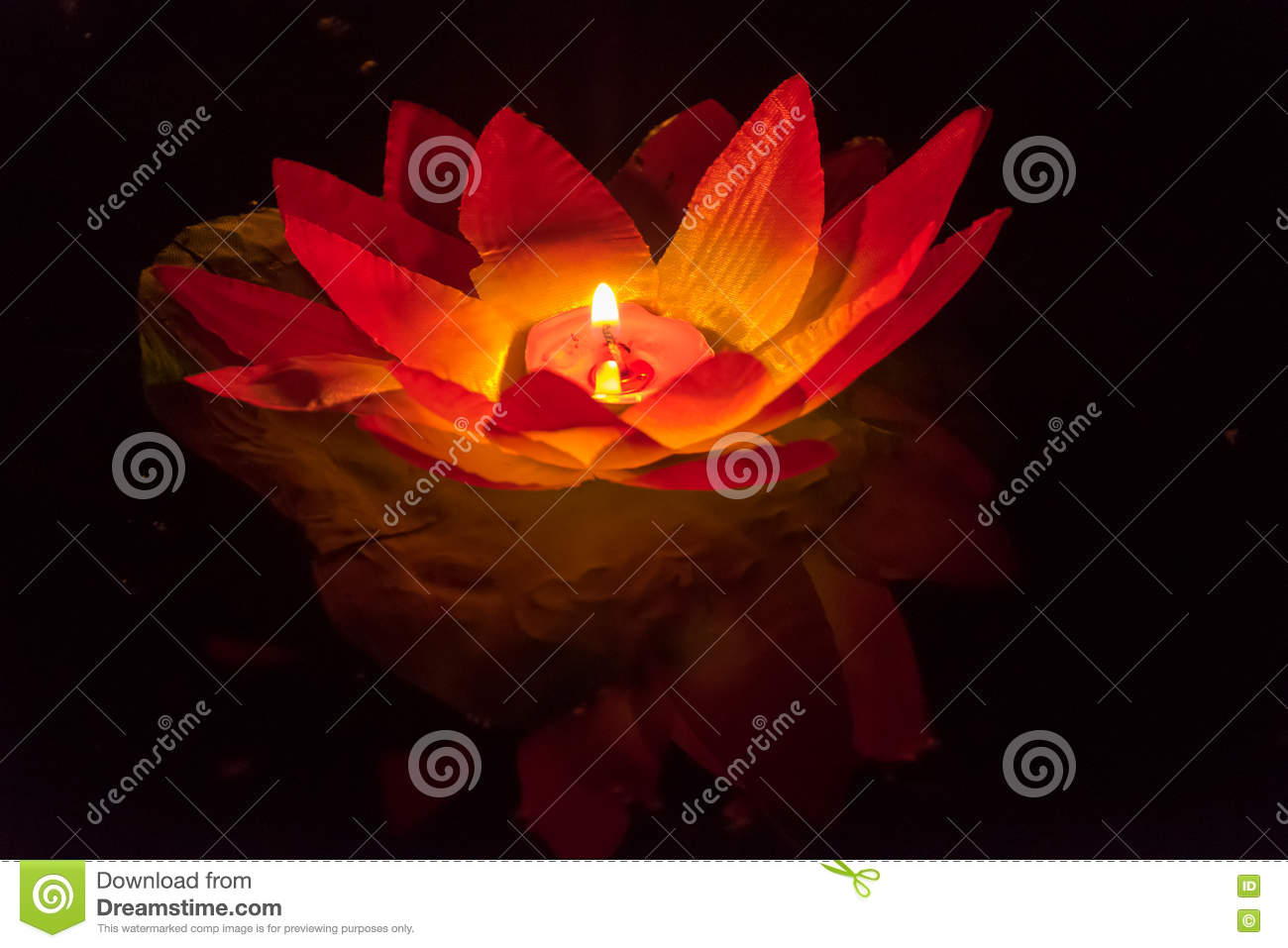 Floating Lotus Flower Paper Lanterns On Water Stock Photo Image Of
