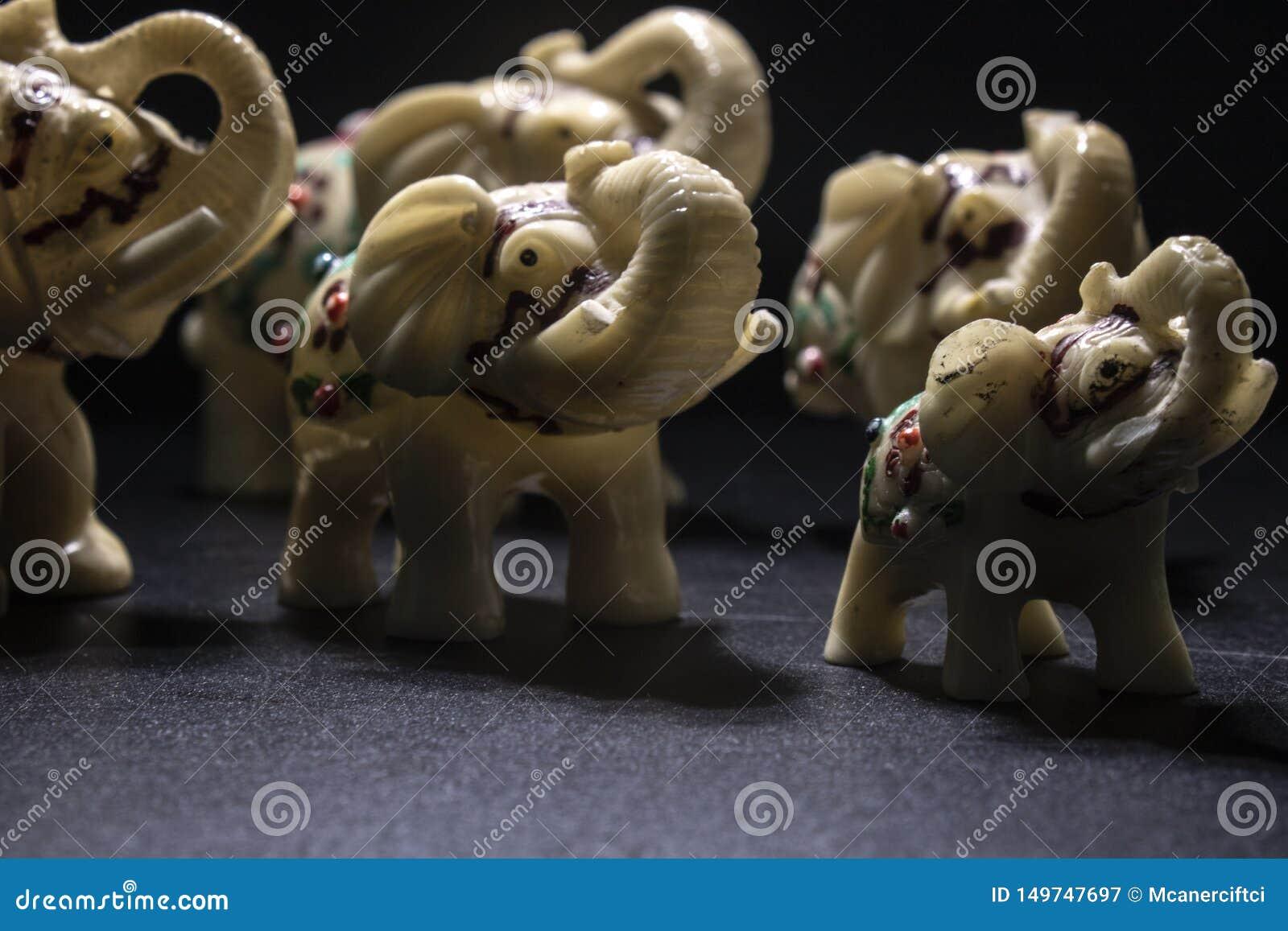 Flock av vit-mönstrade elefanter skjuten sida Svart bakgrund