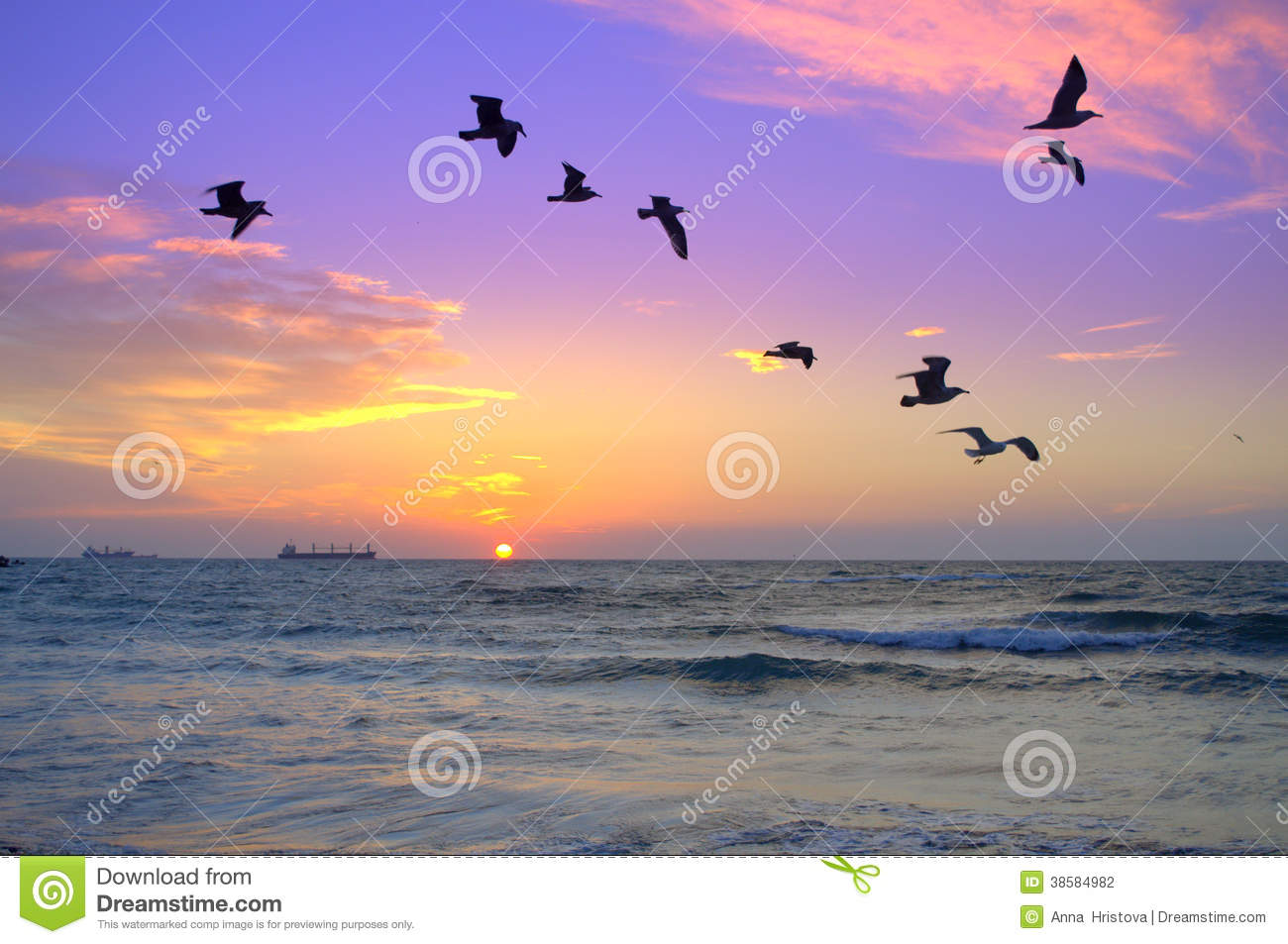 Flock of birds in the background of sea sunrise