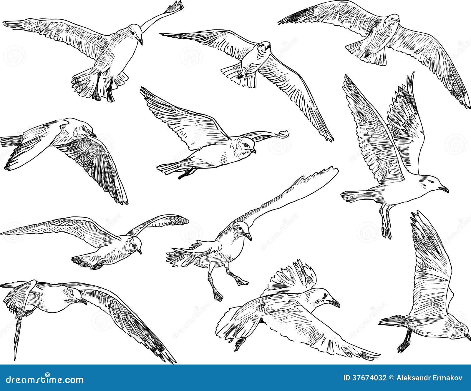A Flock Of Seagulls Listen