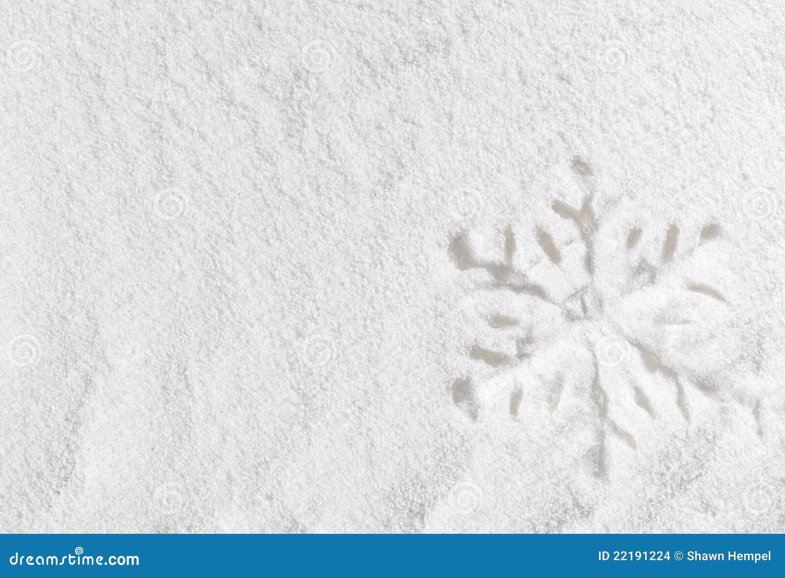 Floco de neve na neve