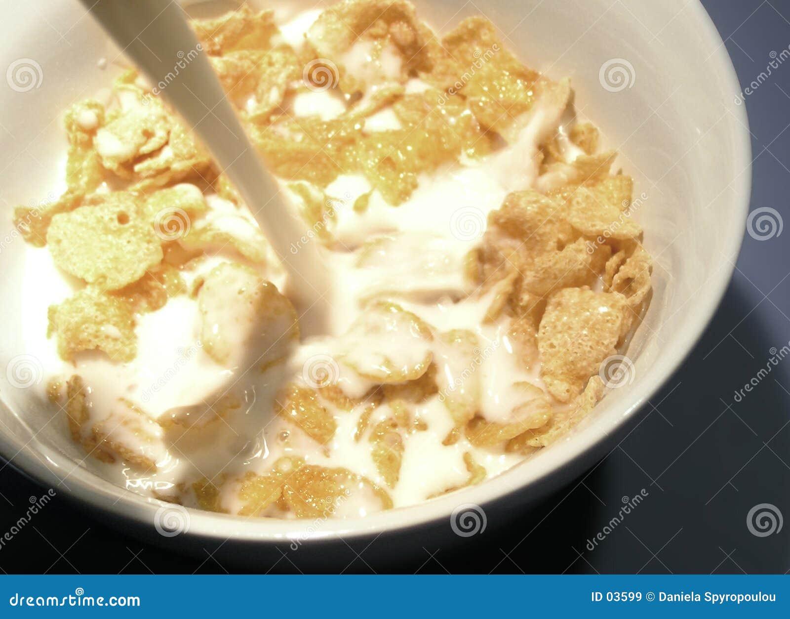 Download Flocons d'avoine image stock. Image du couleur, breakfasts - 3599