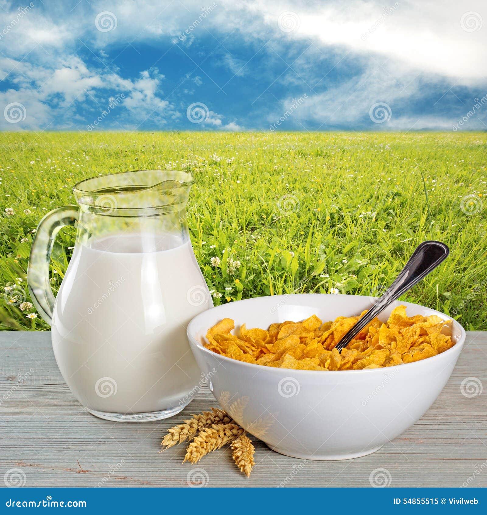 Flocos de milho e jarro de leite