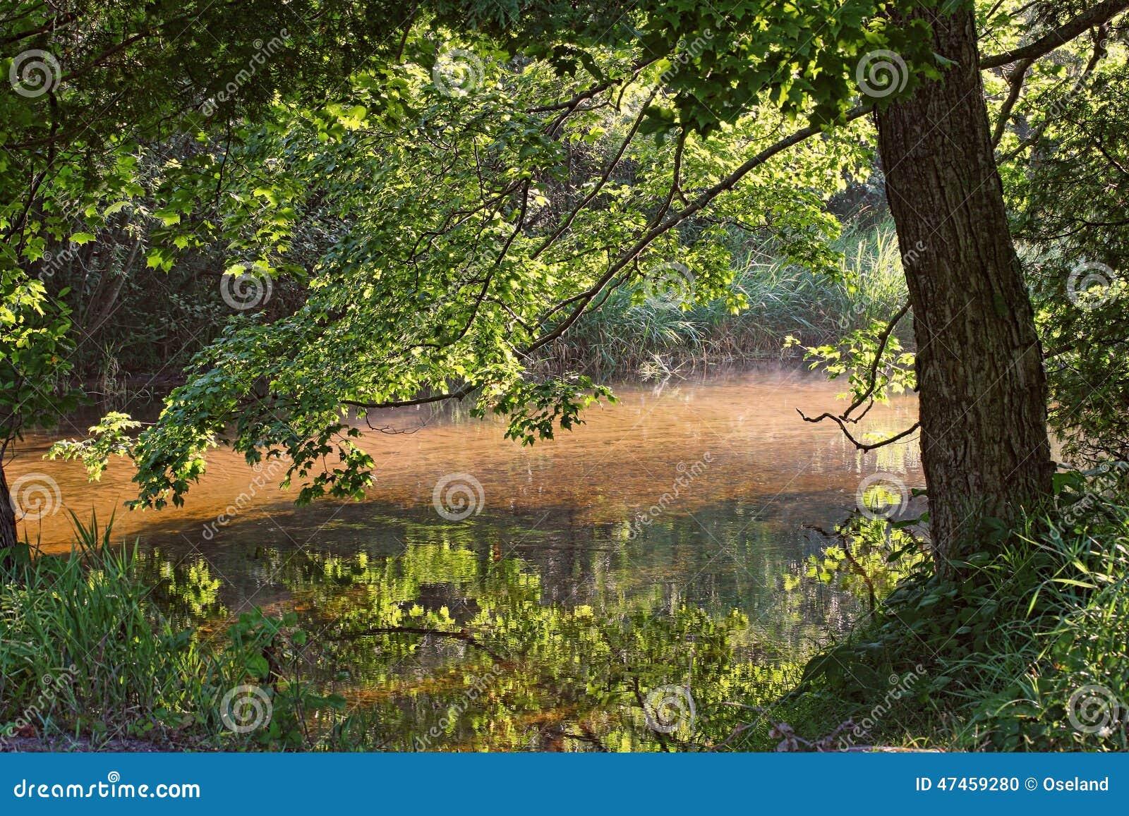 Flod i sommar