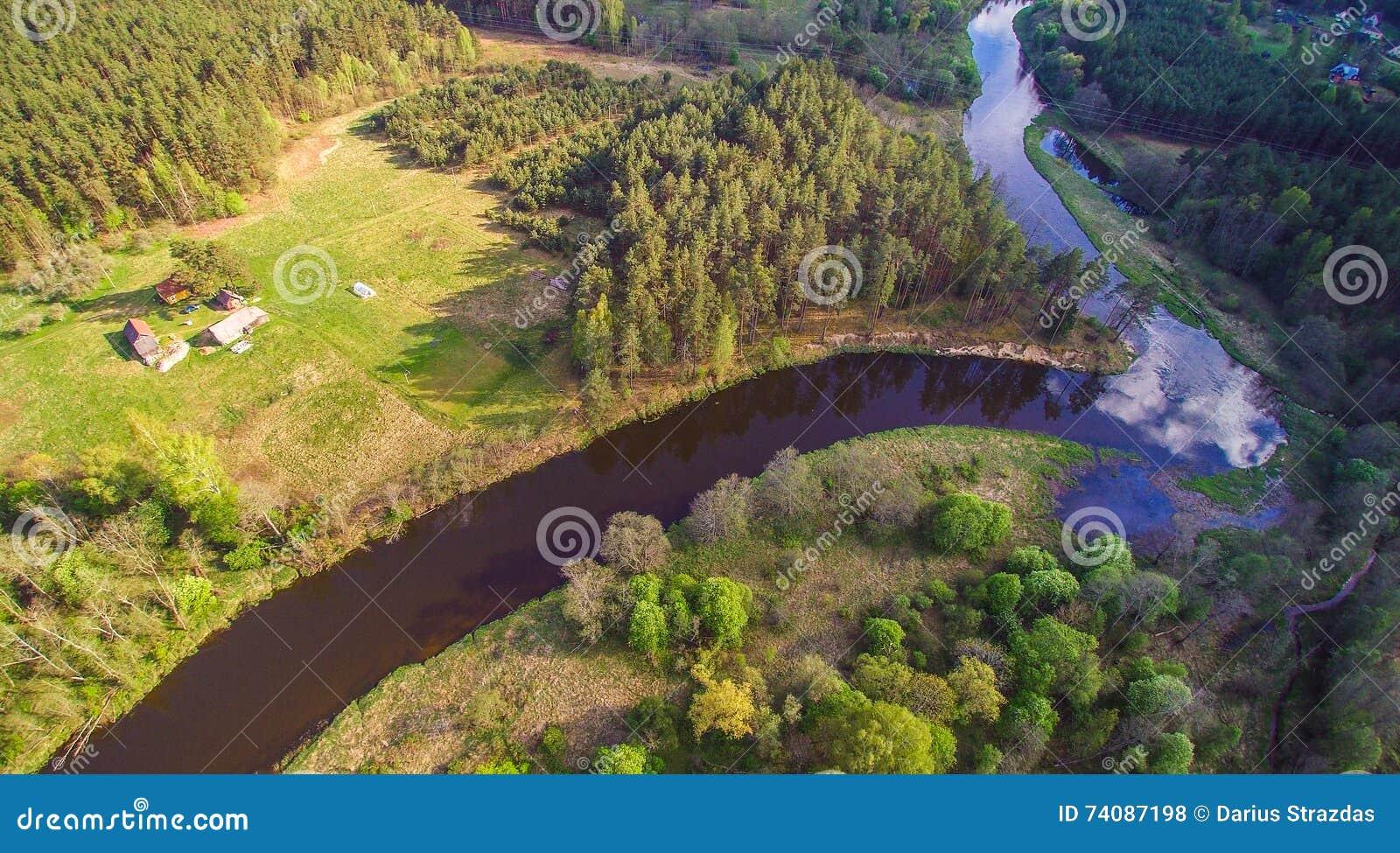 Flod- och skogantenn